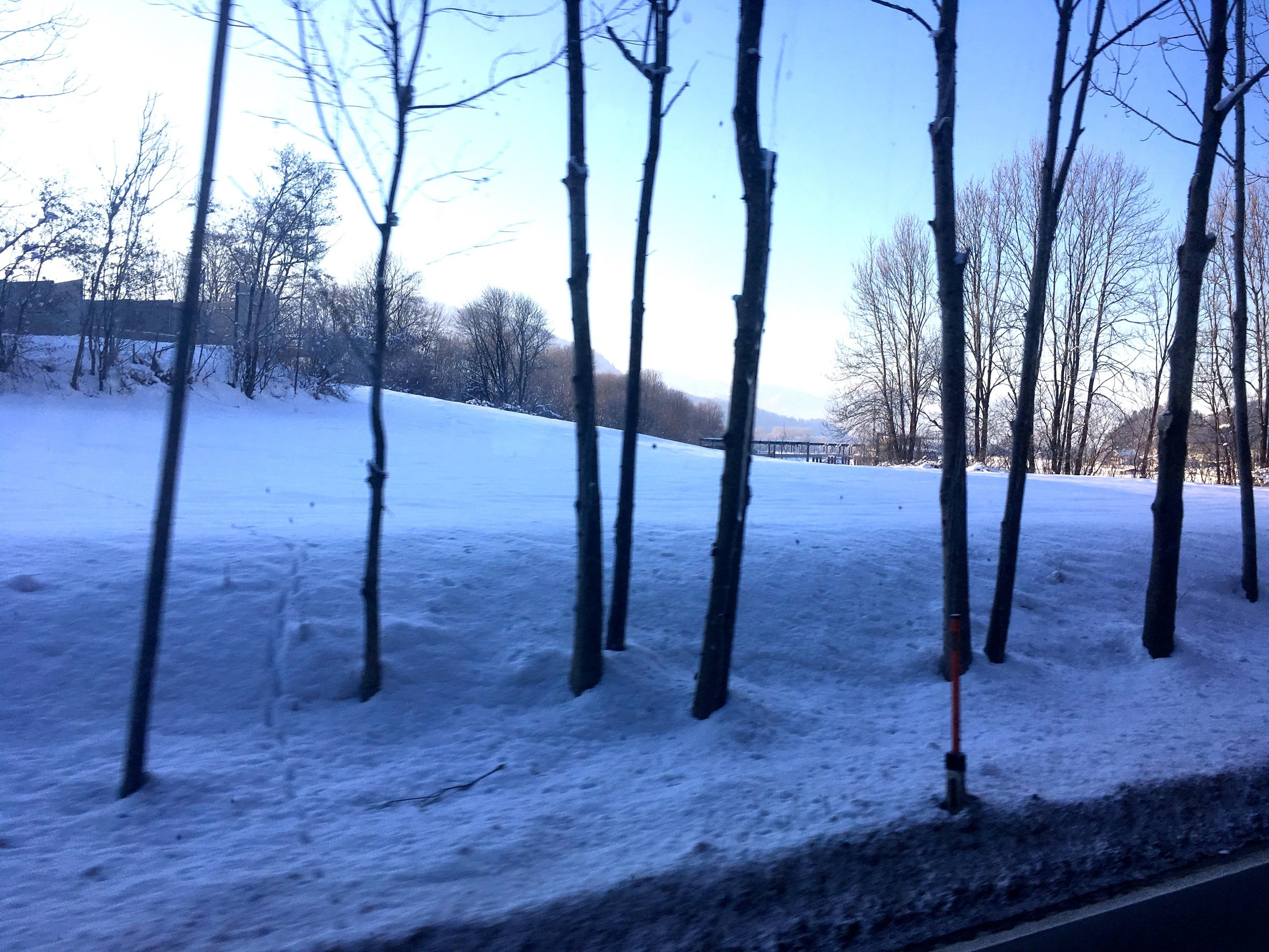 trees covered in snow between munich and kufstein