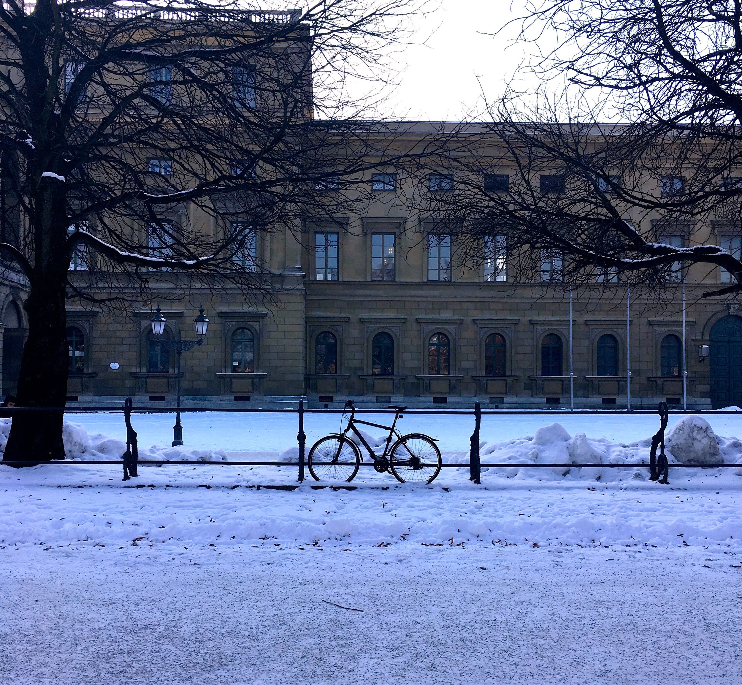 A bicycle parked alongside the railings in Munich's Hofgarten