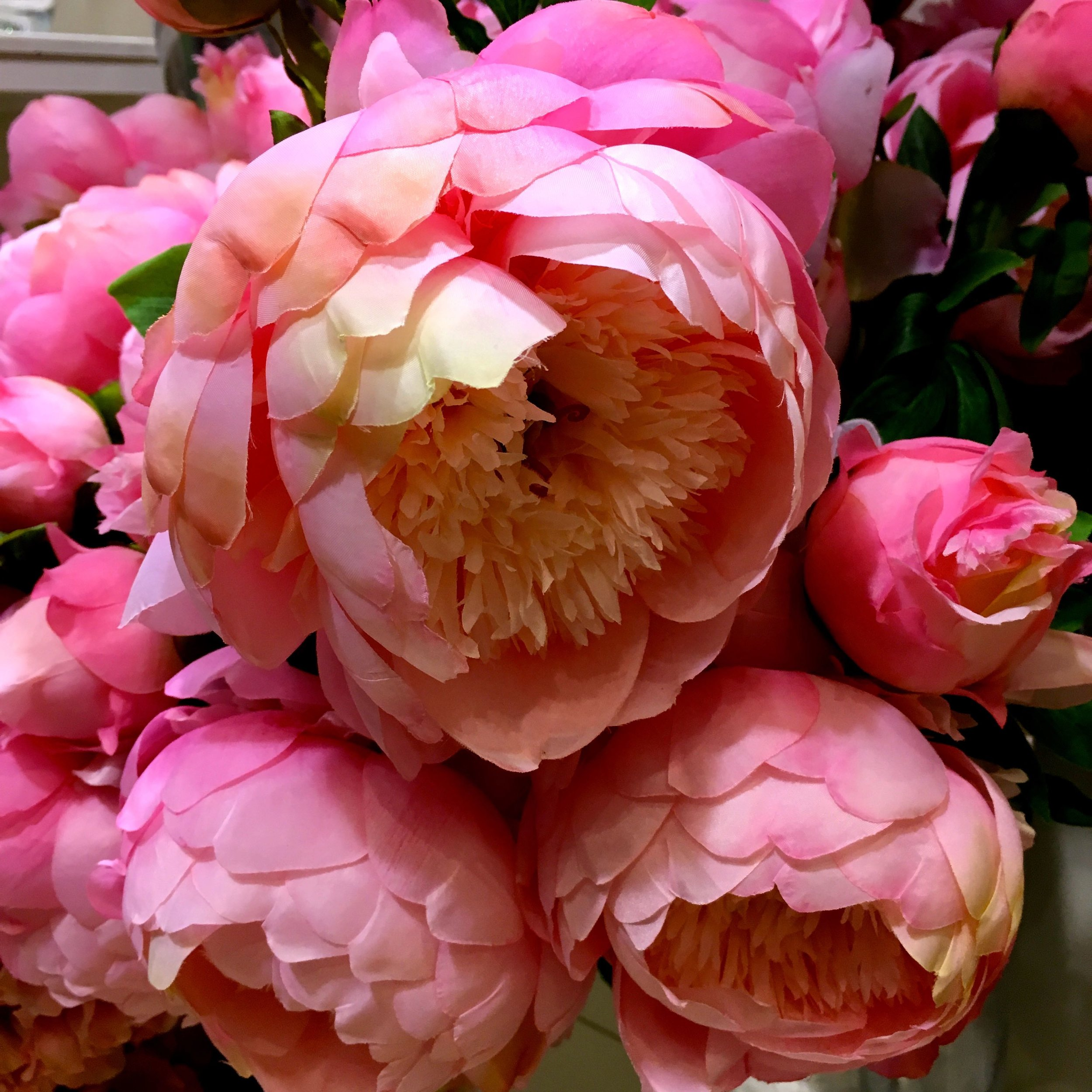 Faux peonies that brought back instant memories of my wedding bouquet