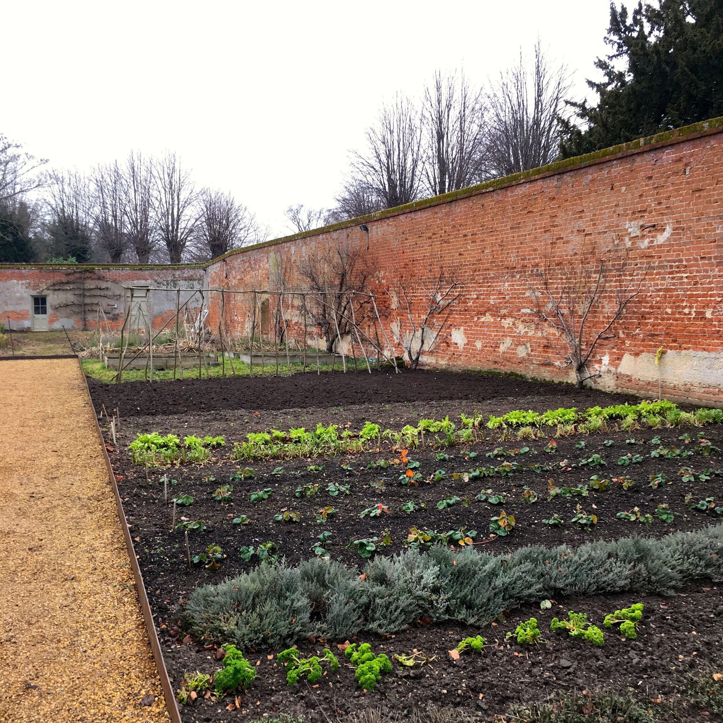 a well ordered walled kitchen garden