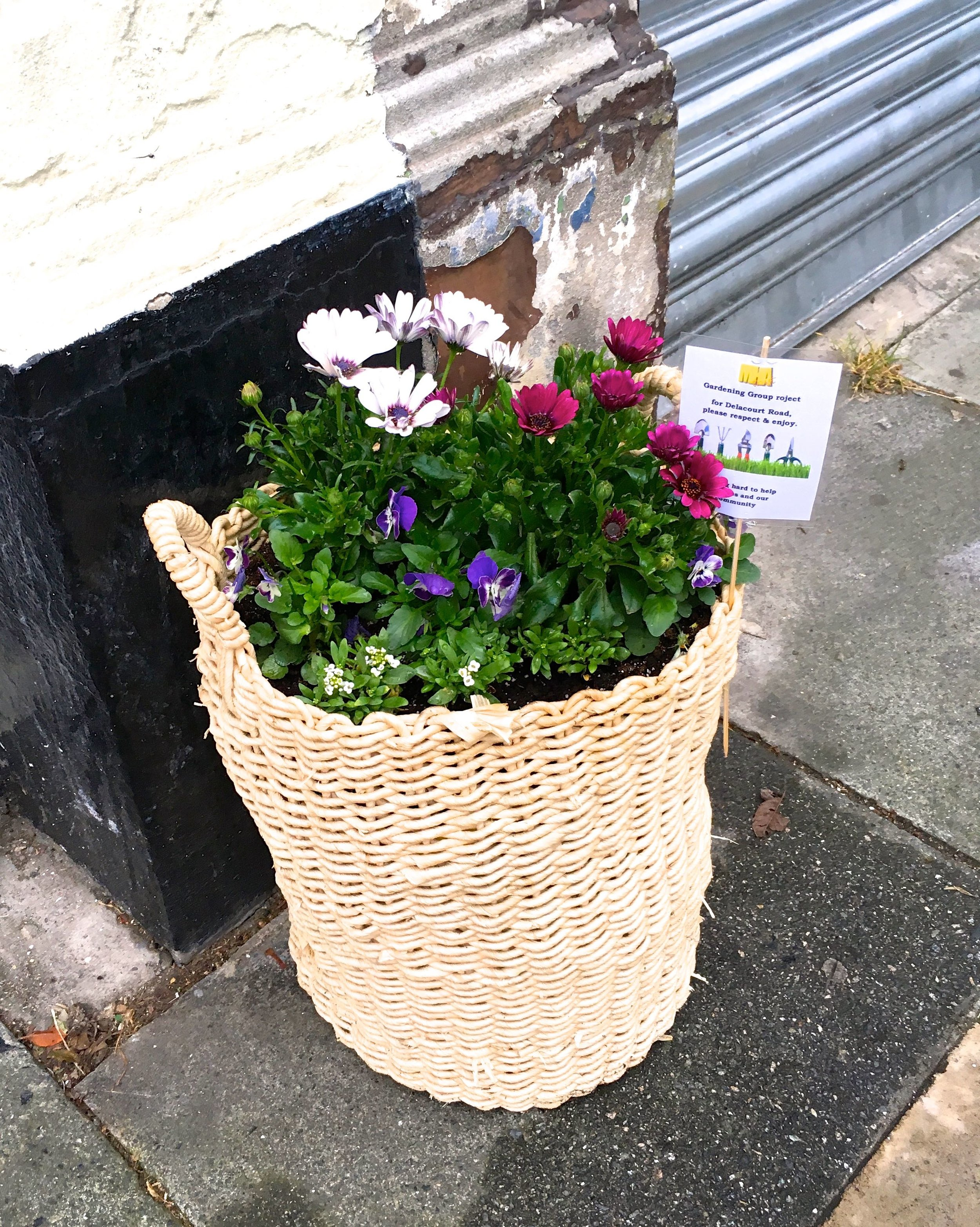 A BASKET OUTSIDE THE BABY SHOP as part of the Delacourt Road Gardening Group Project in Blackheath South London