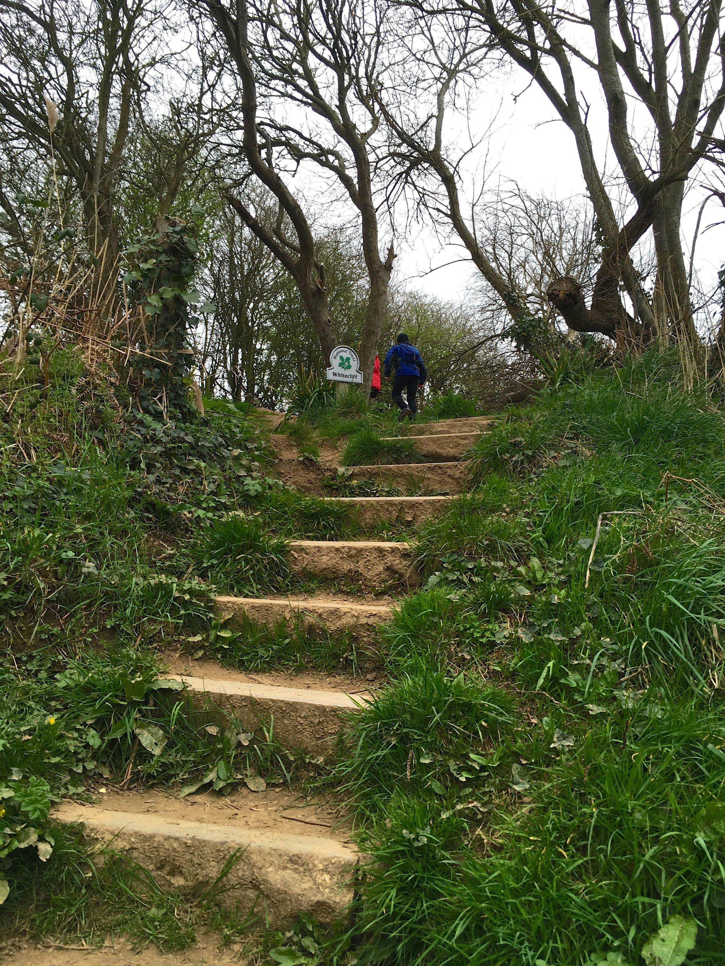 Heading up towards the coastal path and heading towards Old Harry rocks