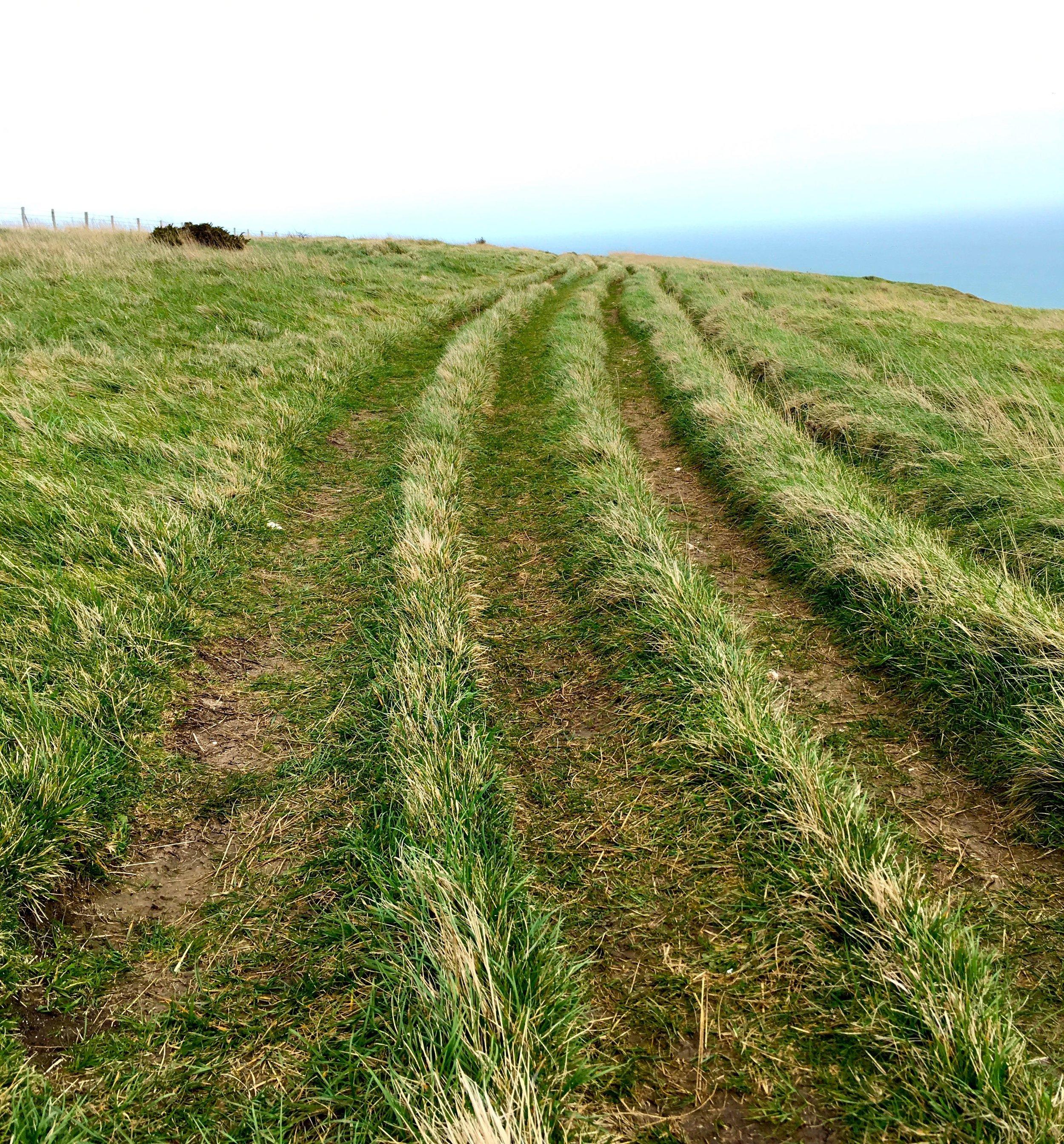 Walking along the burrows of the coastal path towards Old Harry rocks in Dorset