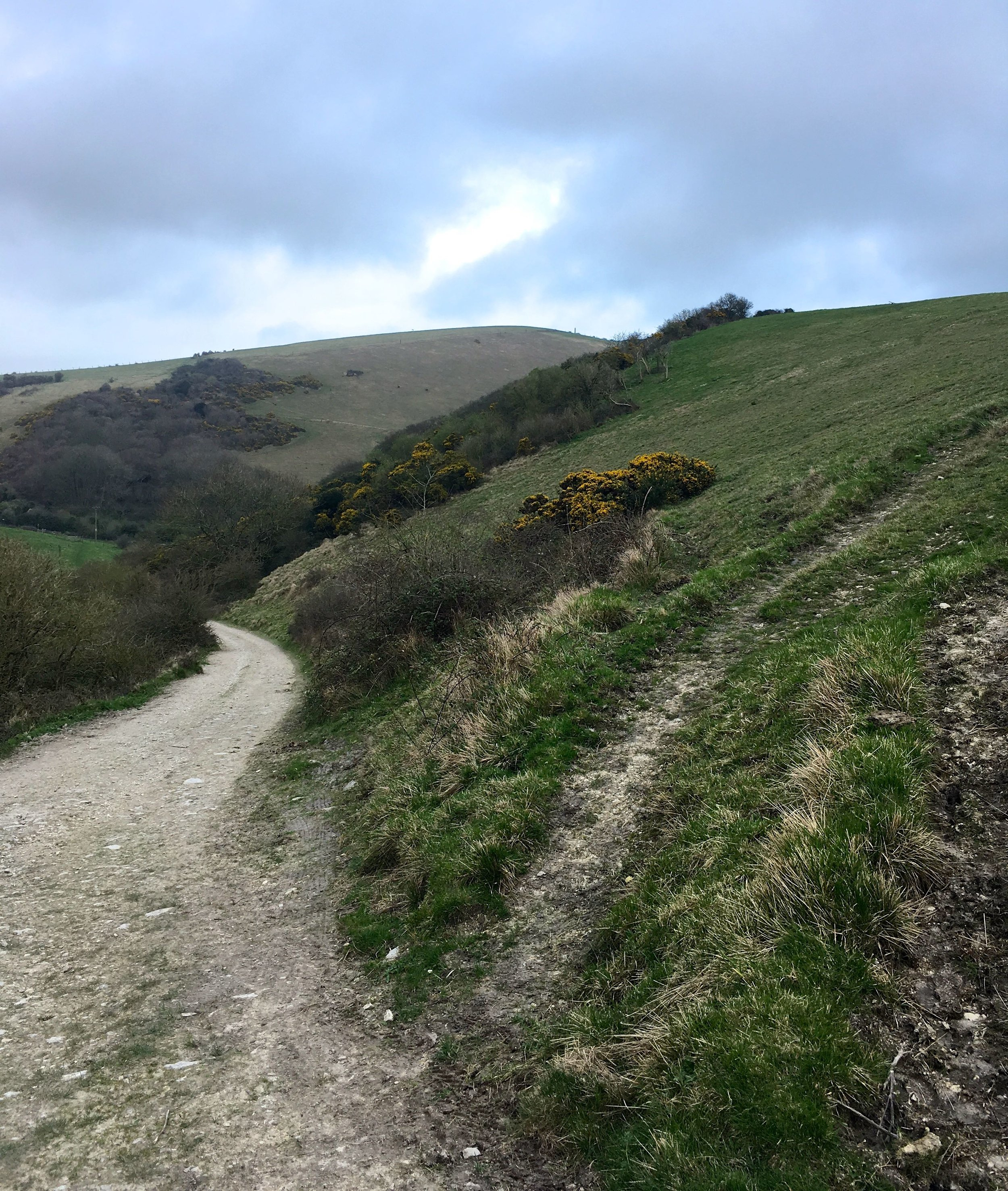 leaving the Purbeck Ridgeway on our way back to the cottage