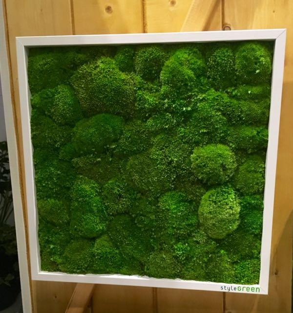 A 3D moss picture by Liam Sapsford at Grand Designs Live 2017
