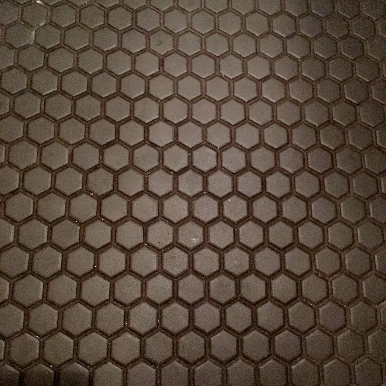 And a look at the floor in the loos at the Tandoor Chop House