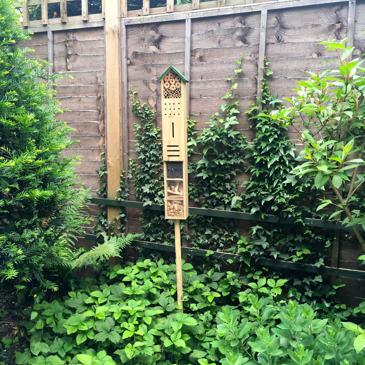 A HIGH-RISE INSECT HOUSE