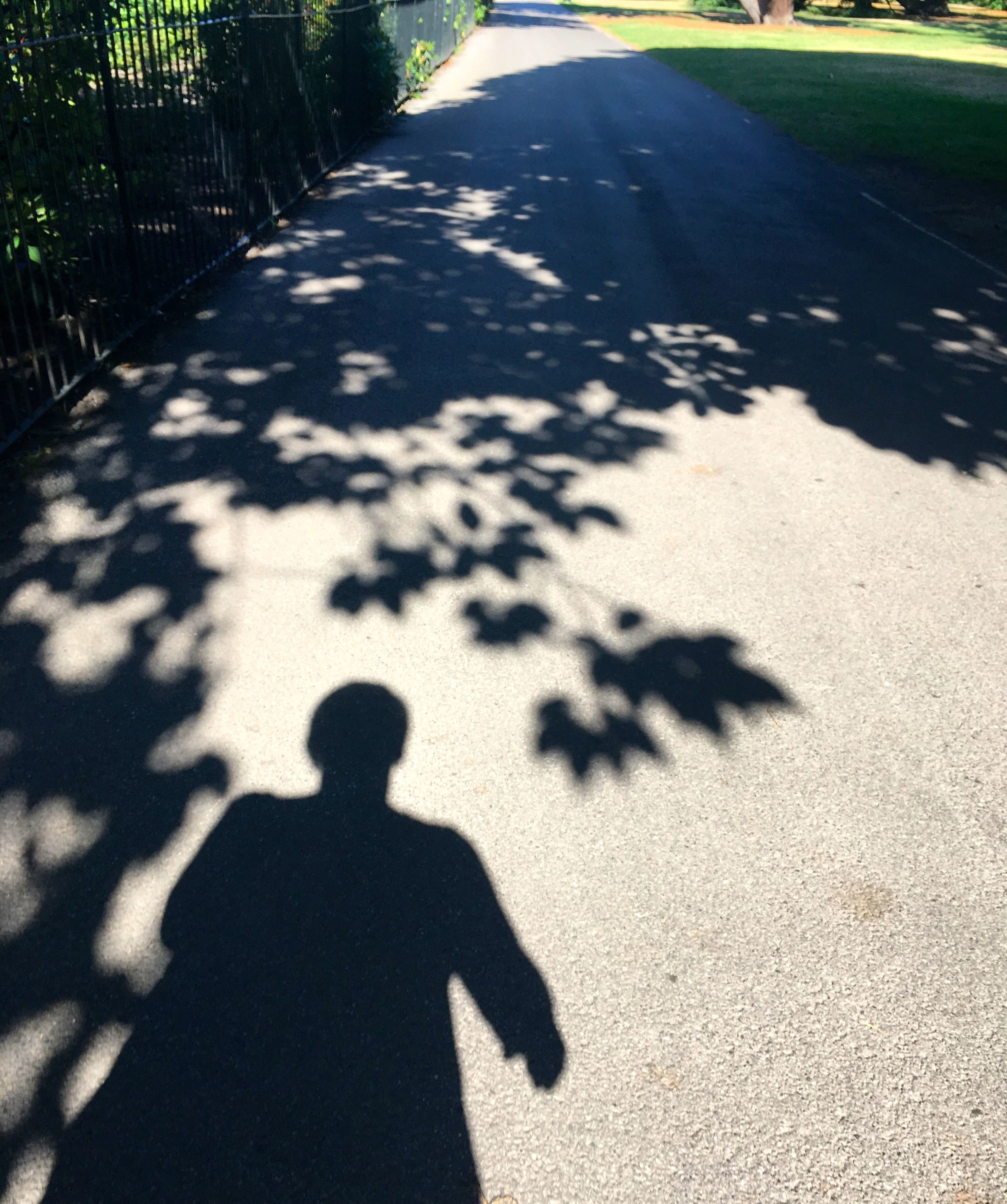 (Not quite) dancing with my shadow in Greenwich Park