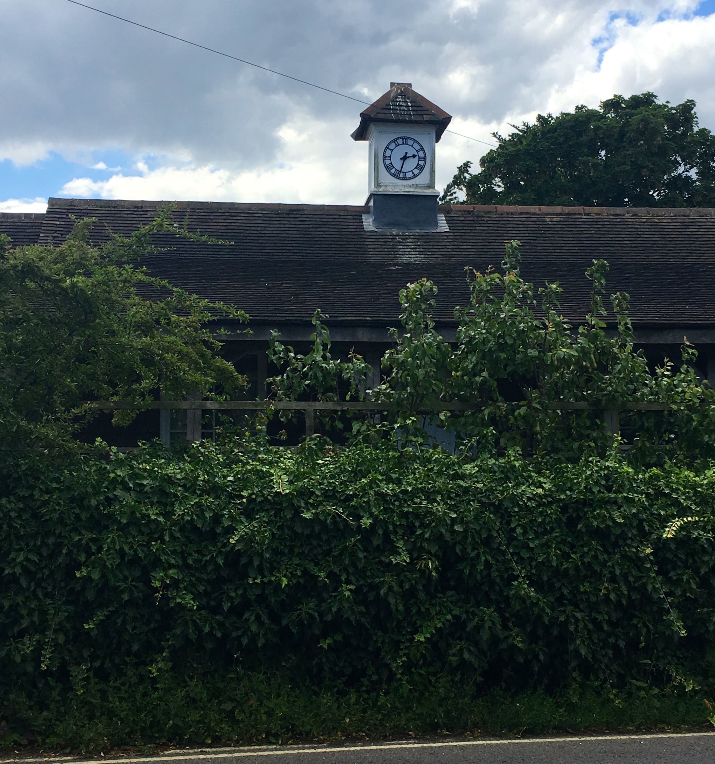 quirky architecture in Orford with a clocktower popping over the hedge