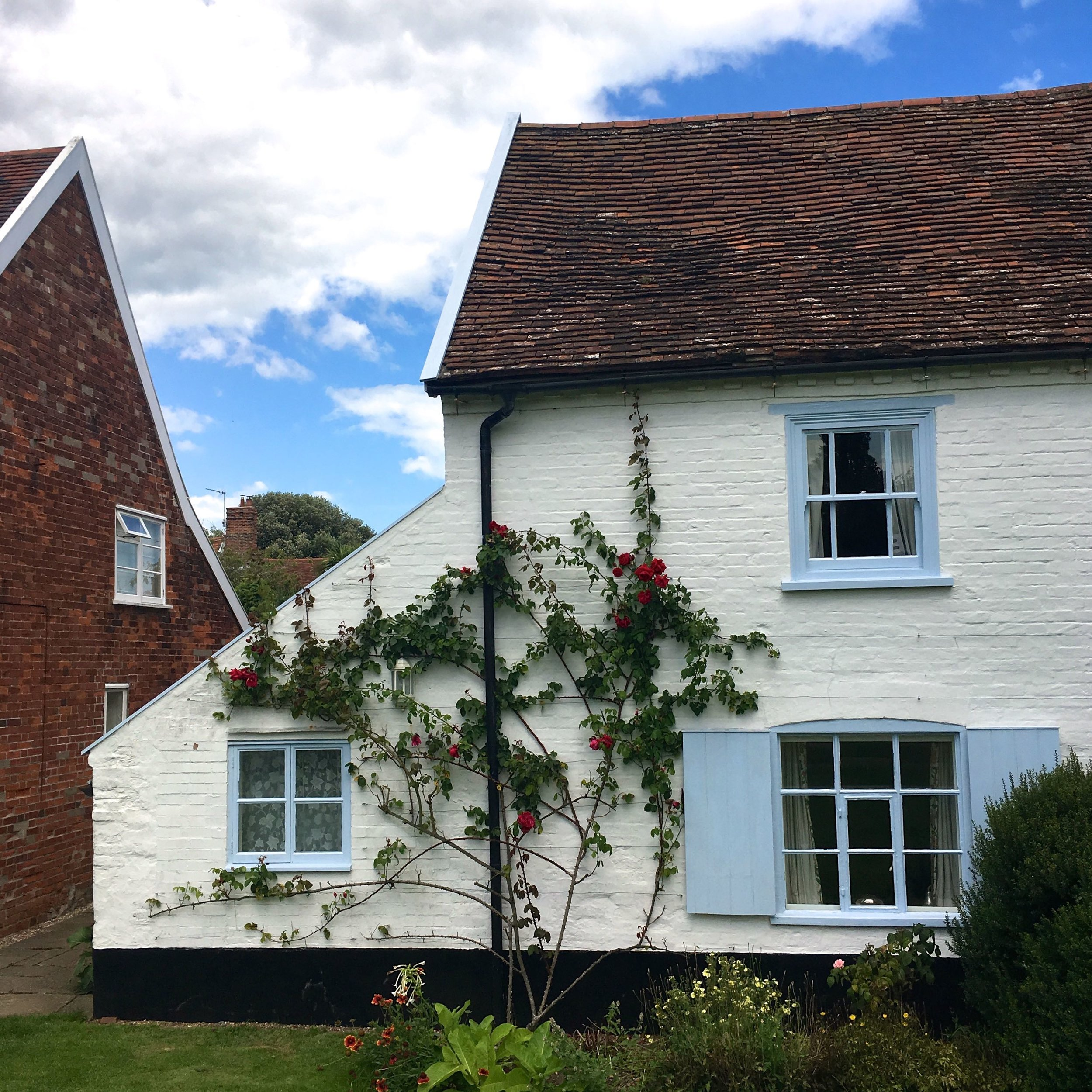 whitewashed cottages with roses growing up it in Orford Suffolk