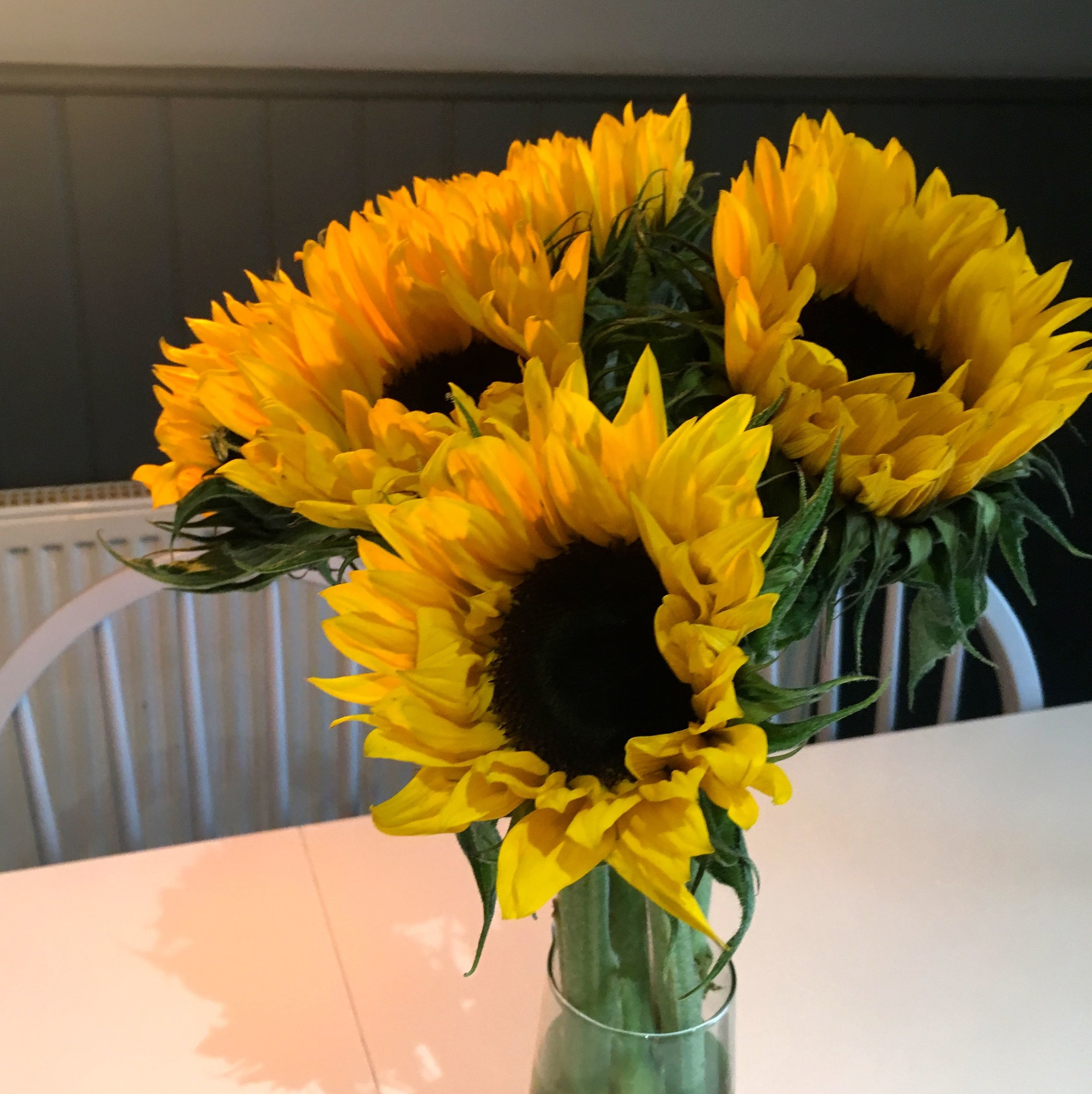 Sunflowers cheering up the newly reopened Trafalgar cafe in Greenwich