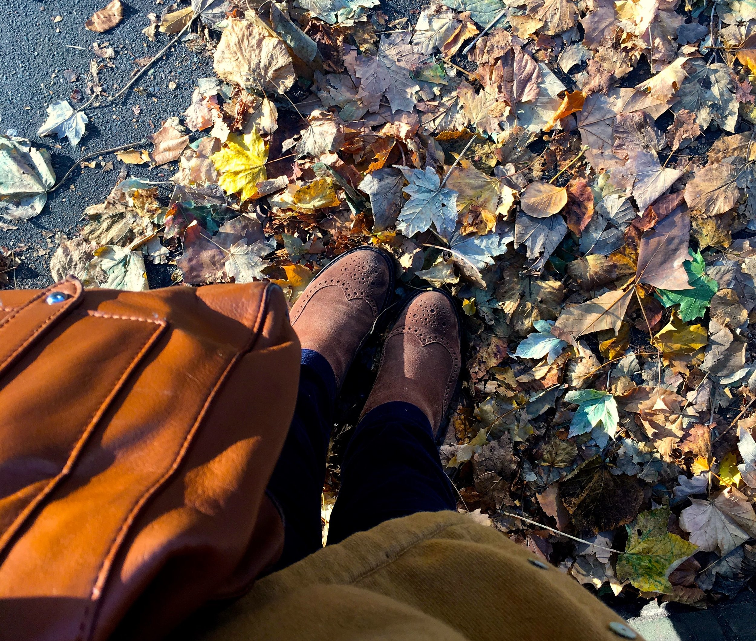 Autumnal colours - clothes and leaves