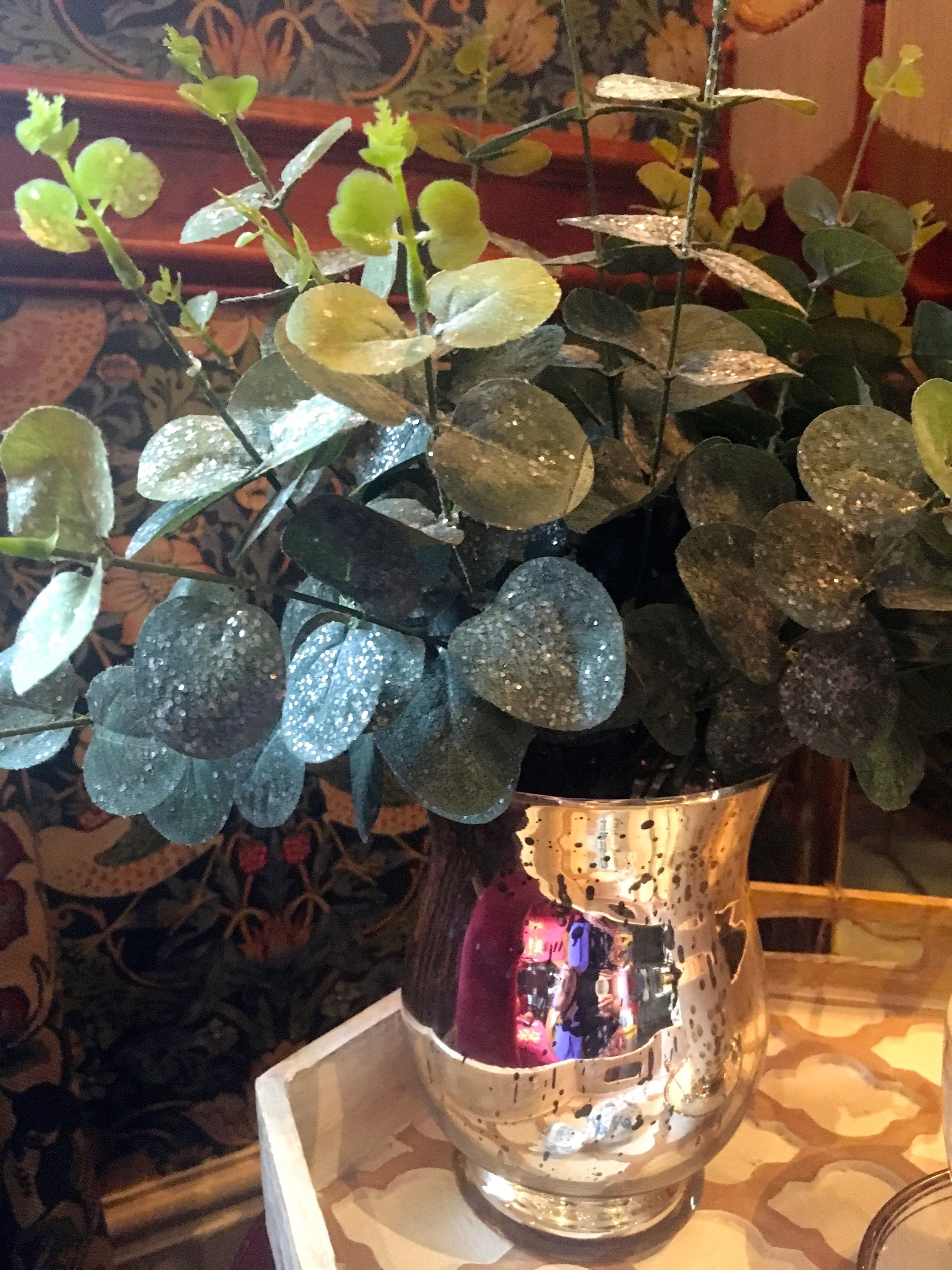 Eucalyptus leaves are on my wishlist this winter