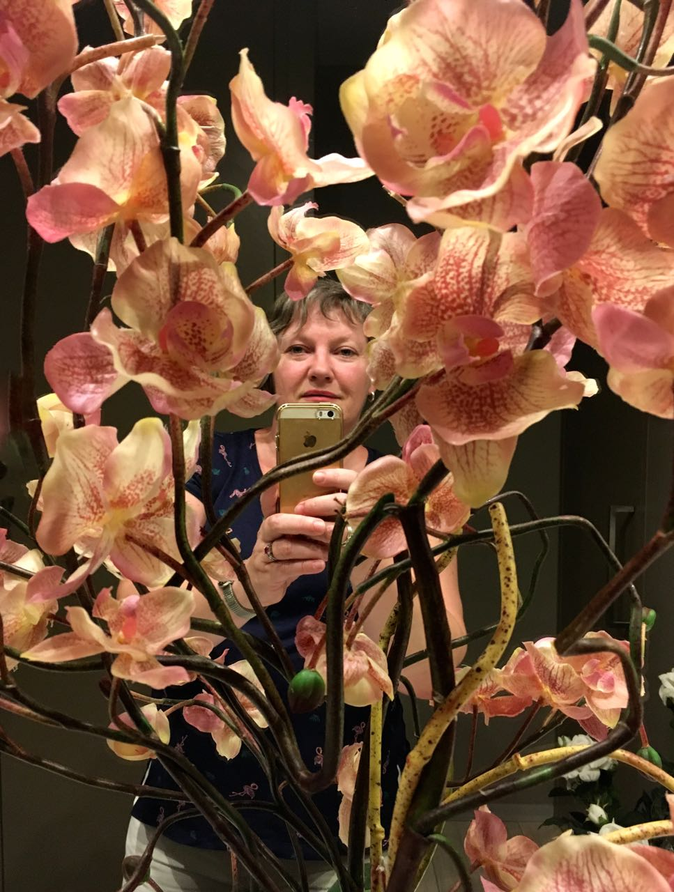 Orchids and me