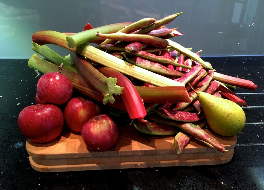 SEPTEMBER'S RED AND GREEN BOUNTY