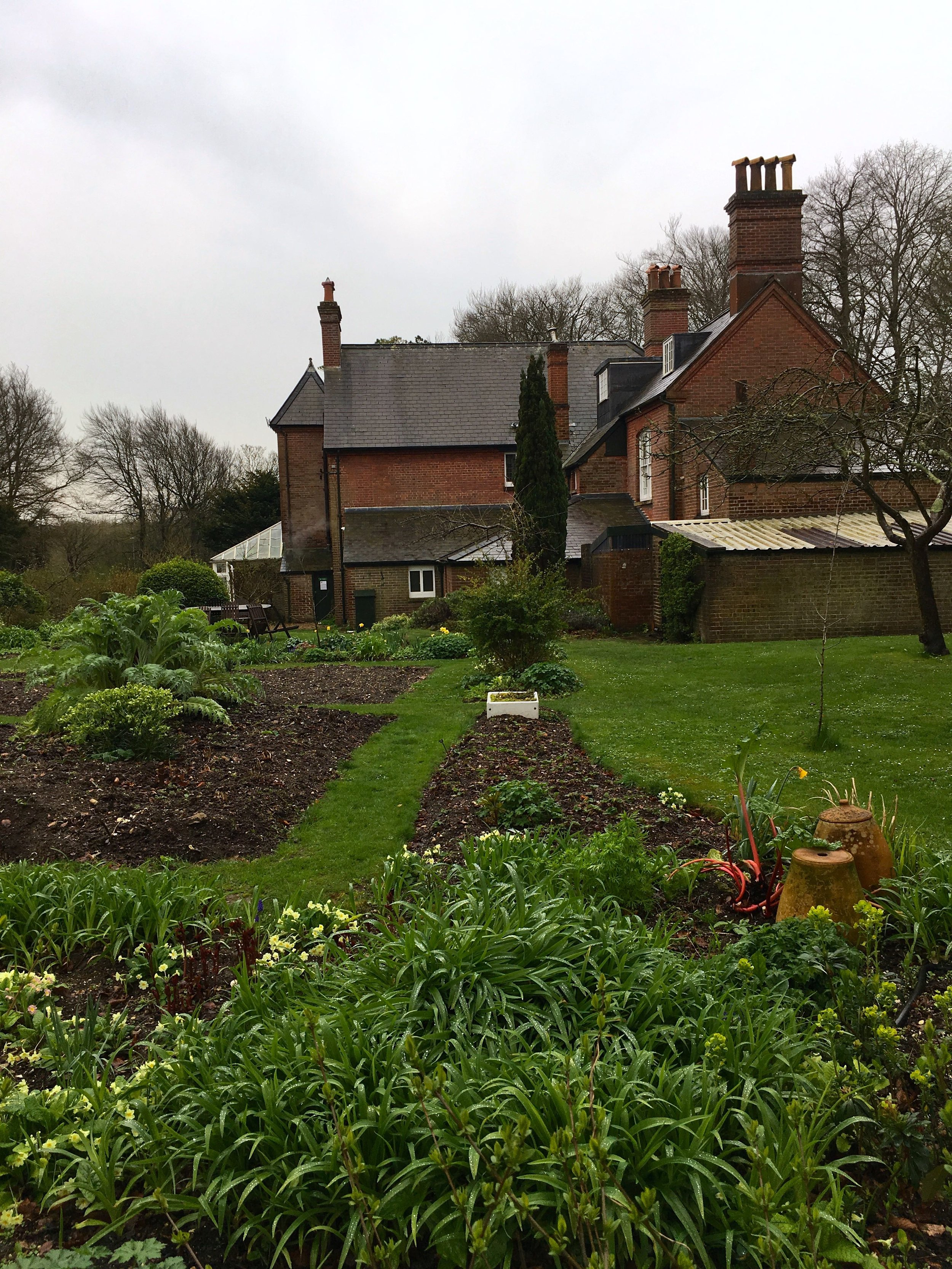 the neat beds of the vegetable garden at the National Trust property in Dorchester