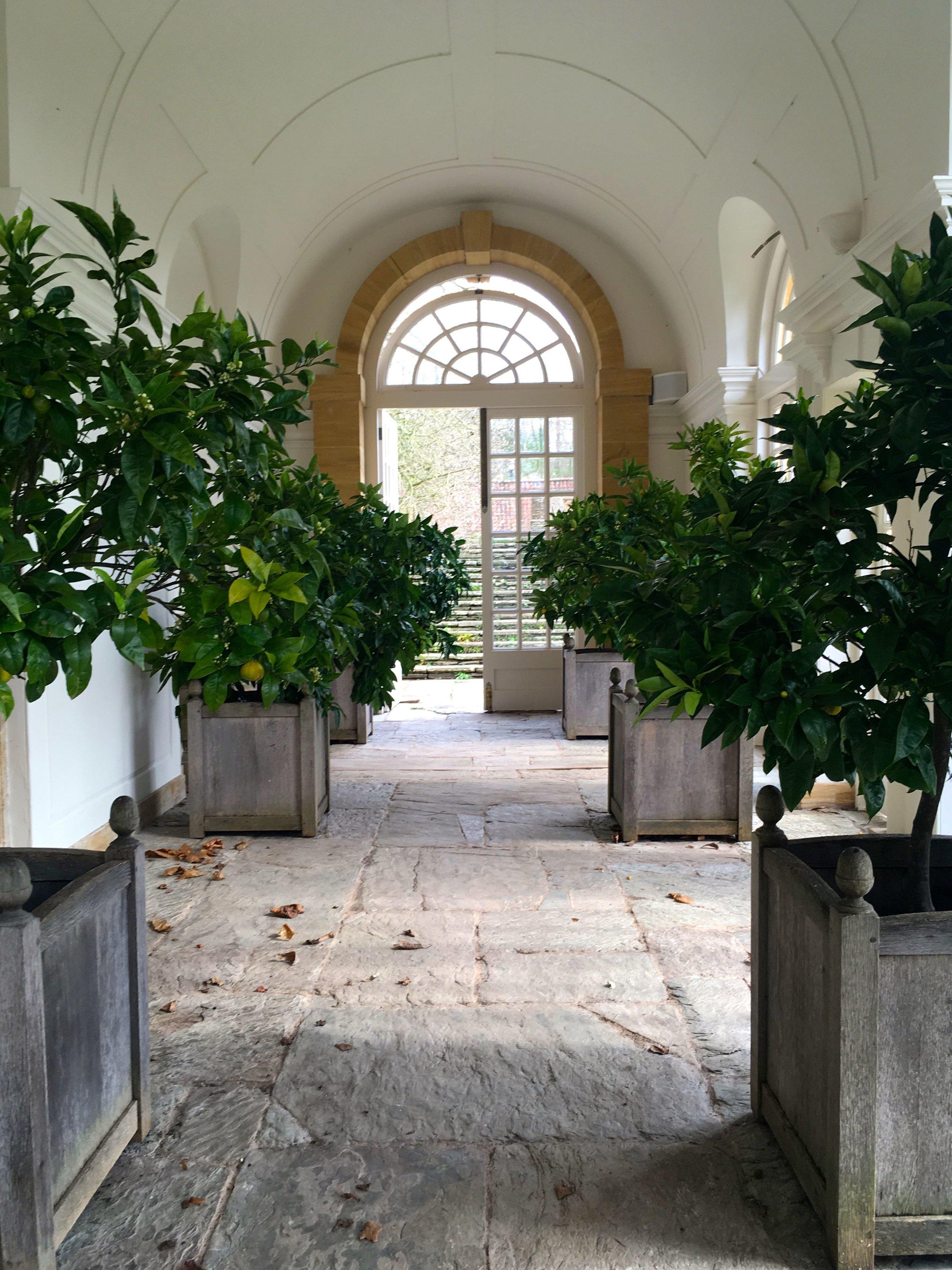 Inside the fabulous Orangery at Hestercombe
