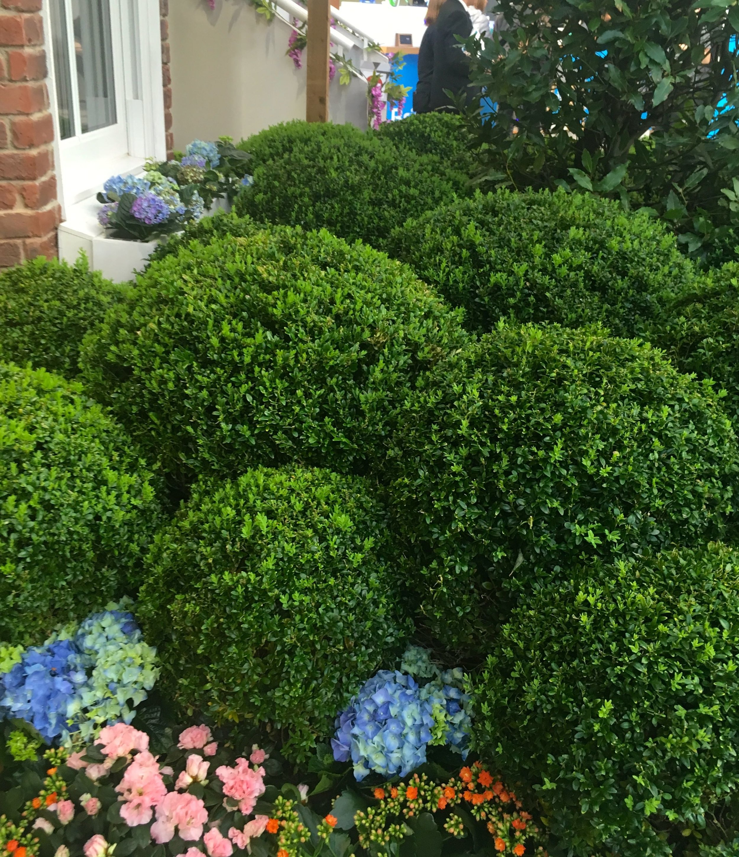 A faux cloud hedge outside the Innovation Home at the Ideal Home Show