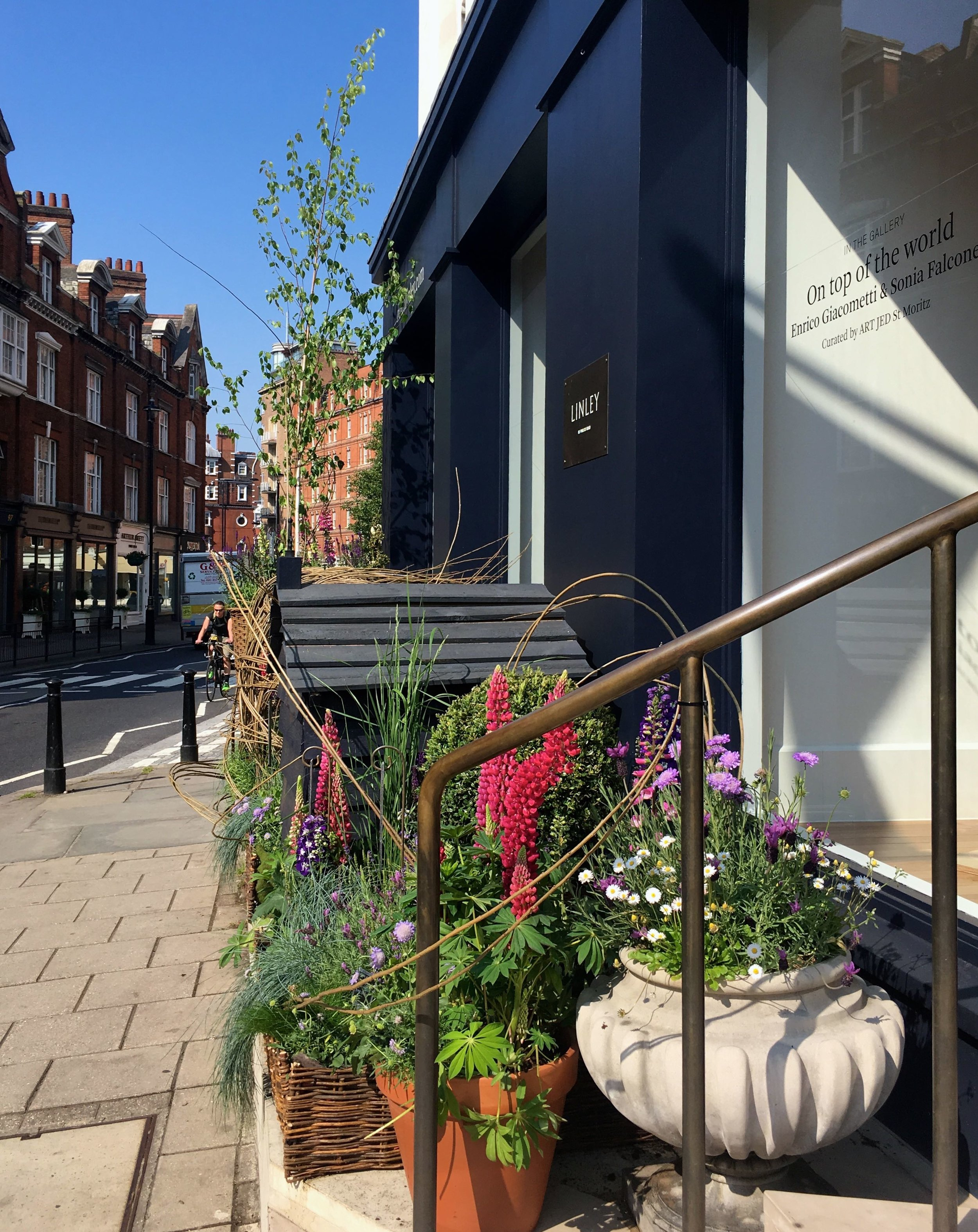 Blue skies and a garden for bees outside the shop
