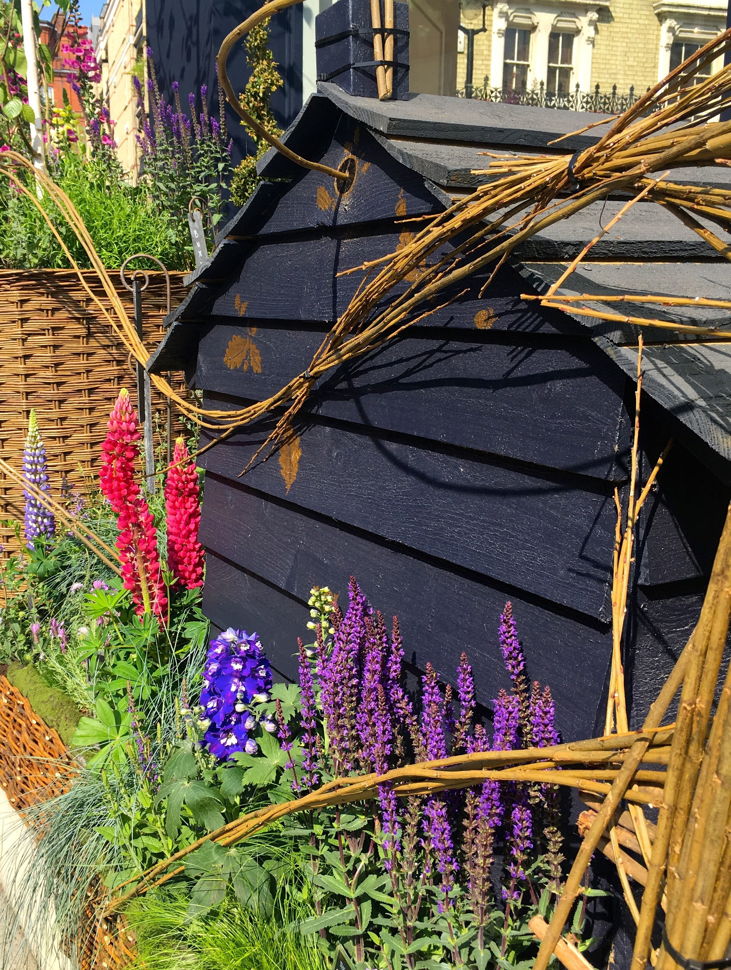 Plants for bees, and a beehive too
