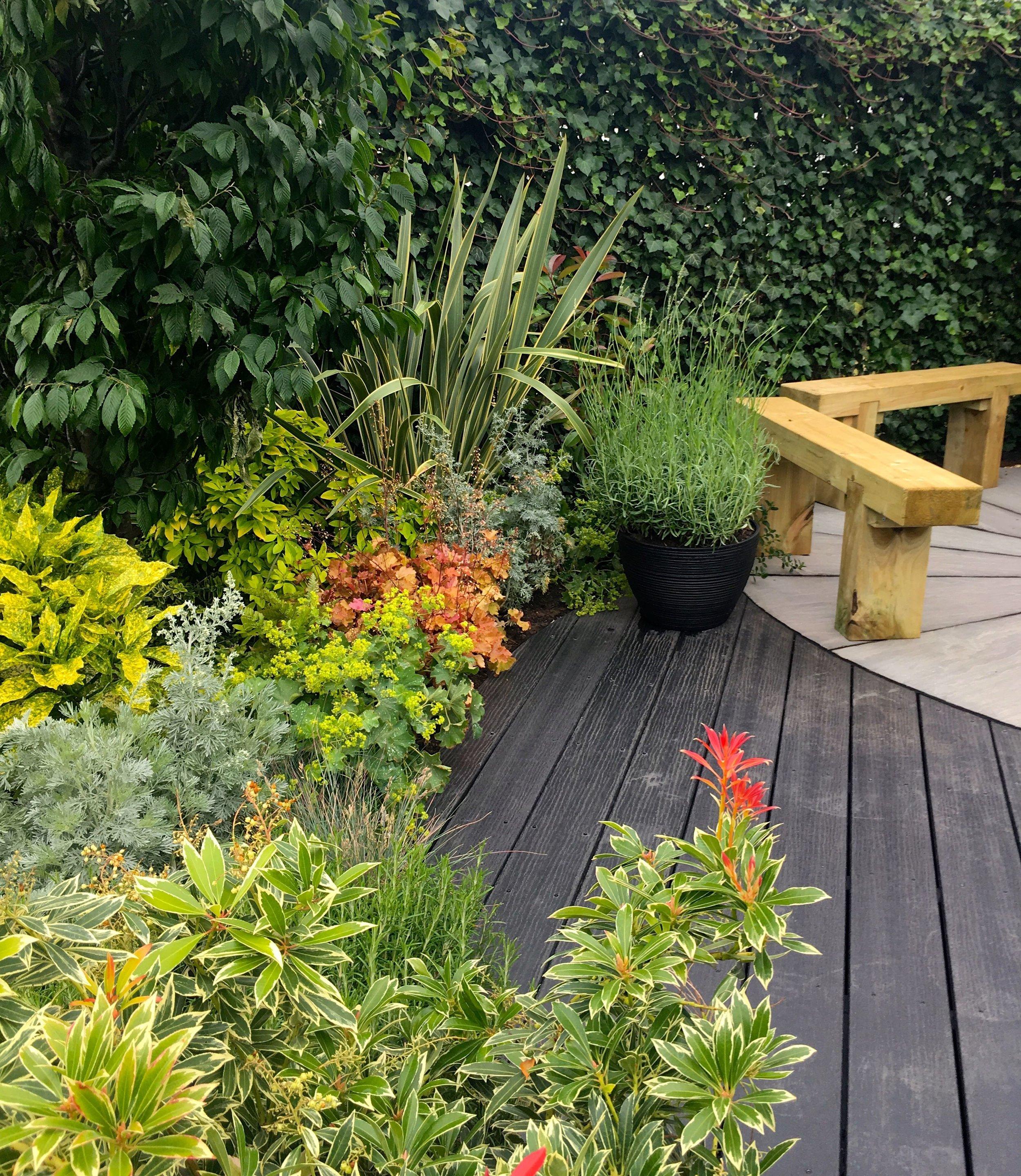 planting in The Round Garden at Gardener's World Live
