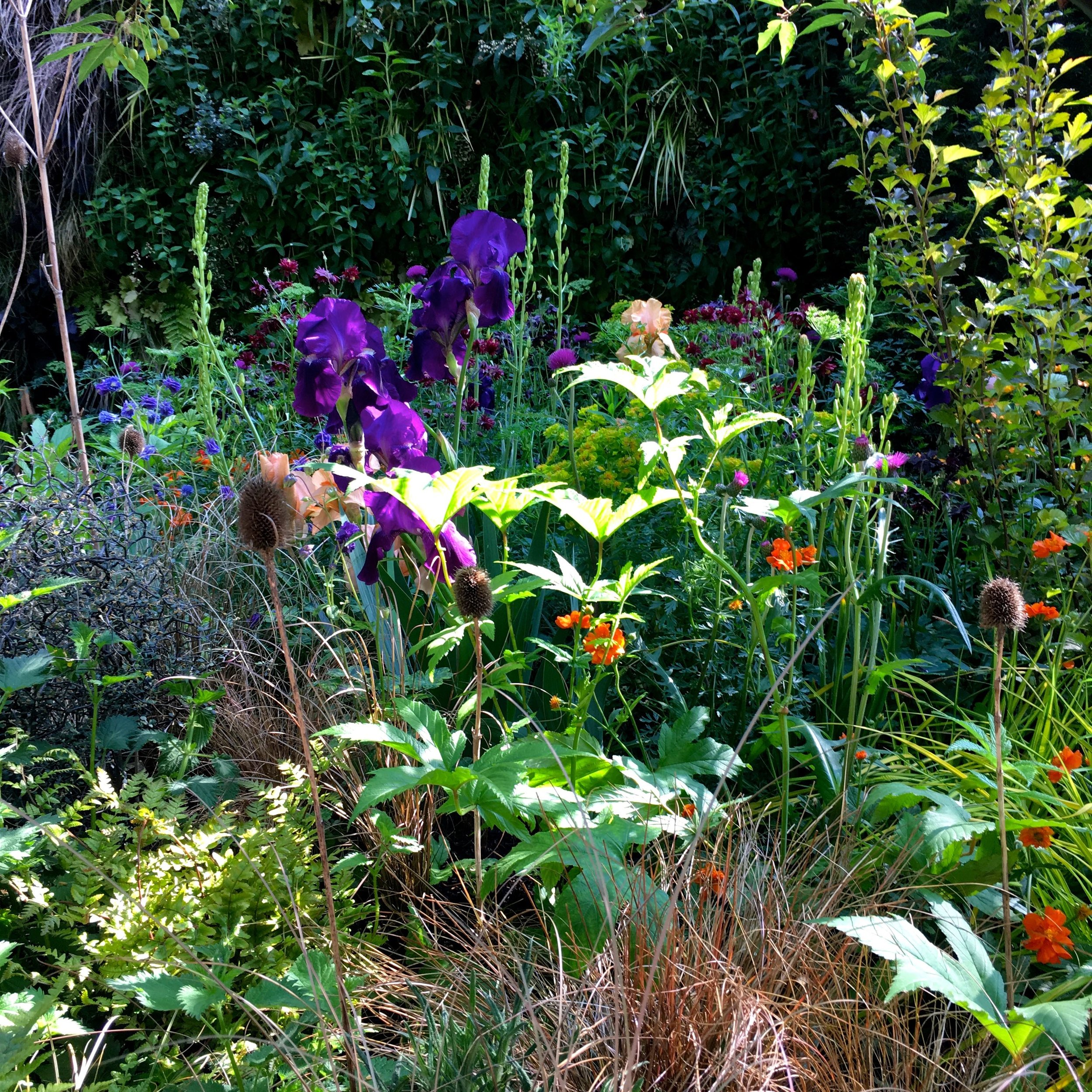 planting in the embroidered minds epilepsy garden