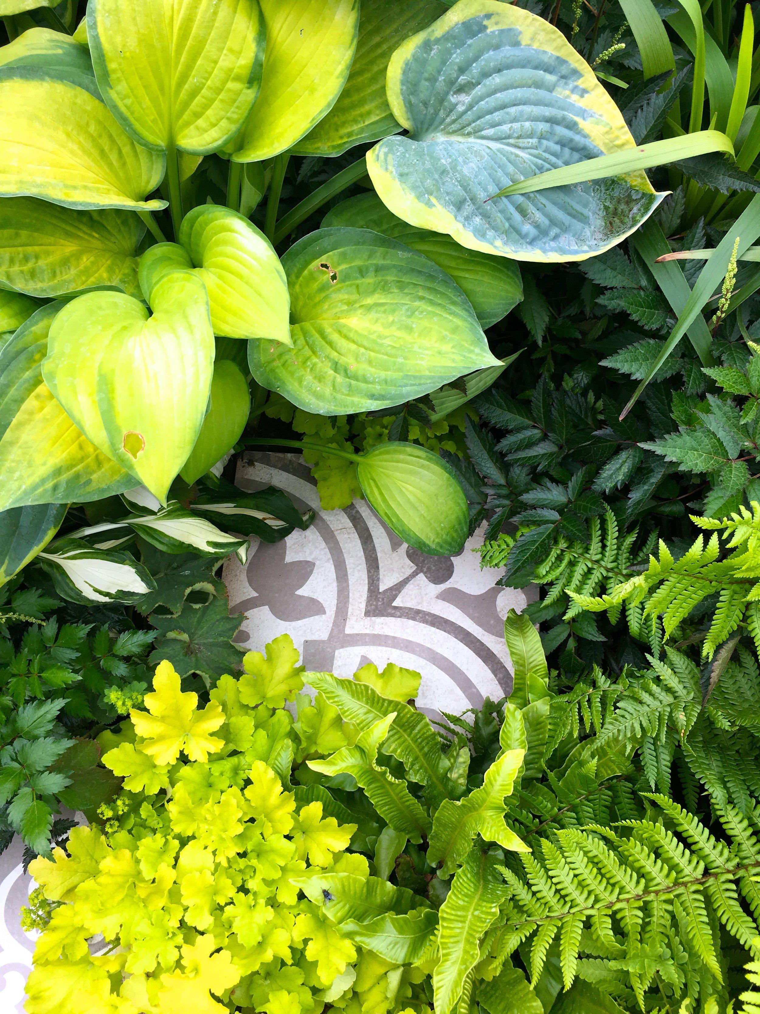 spot the tile amongst the greenery