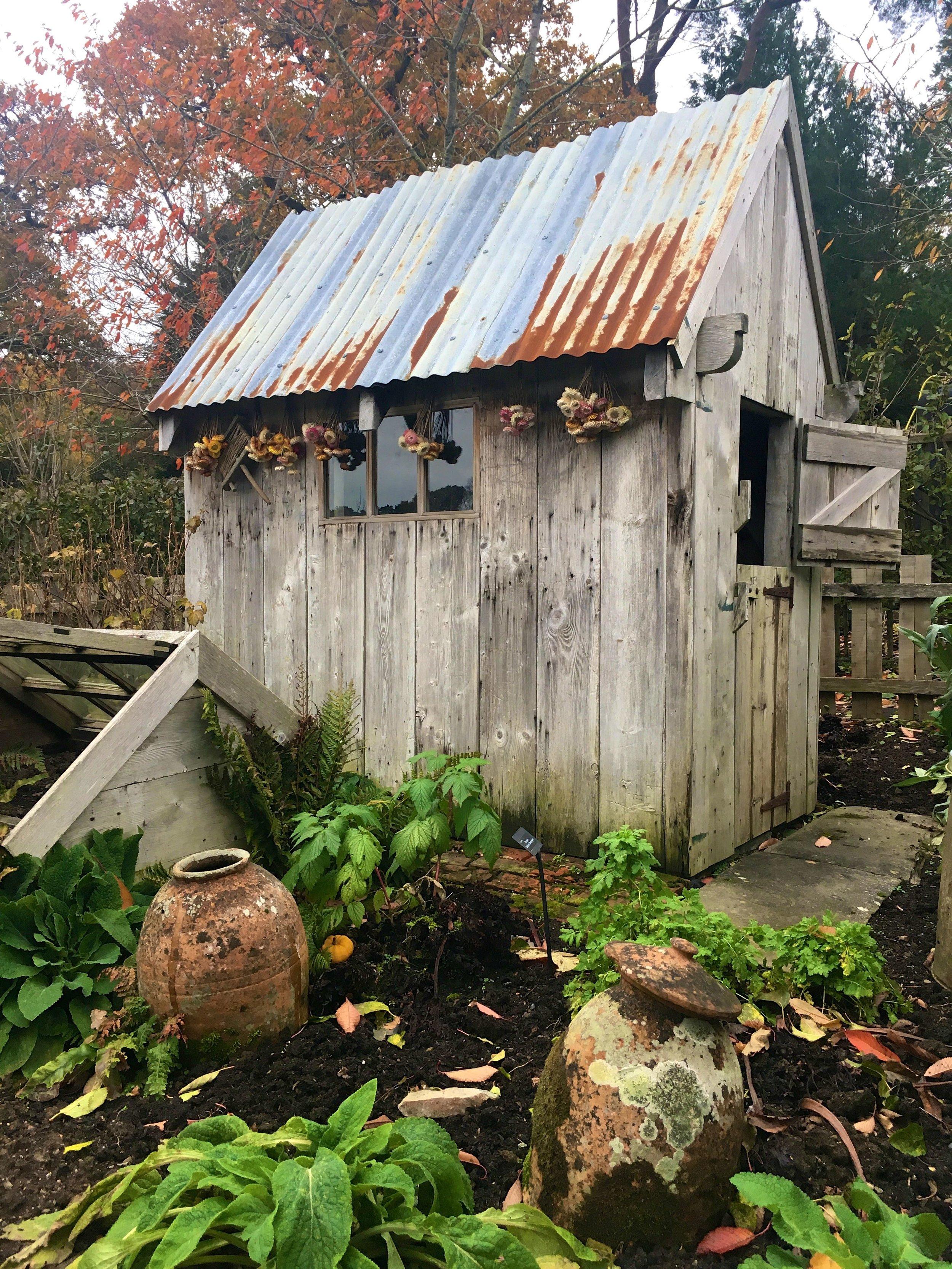 A closer look at Mr McGregor's ramshackle shed