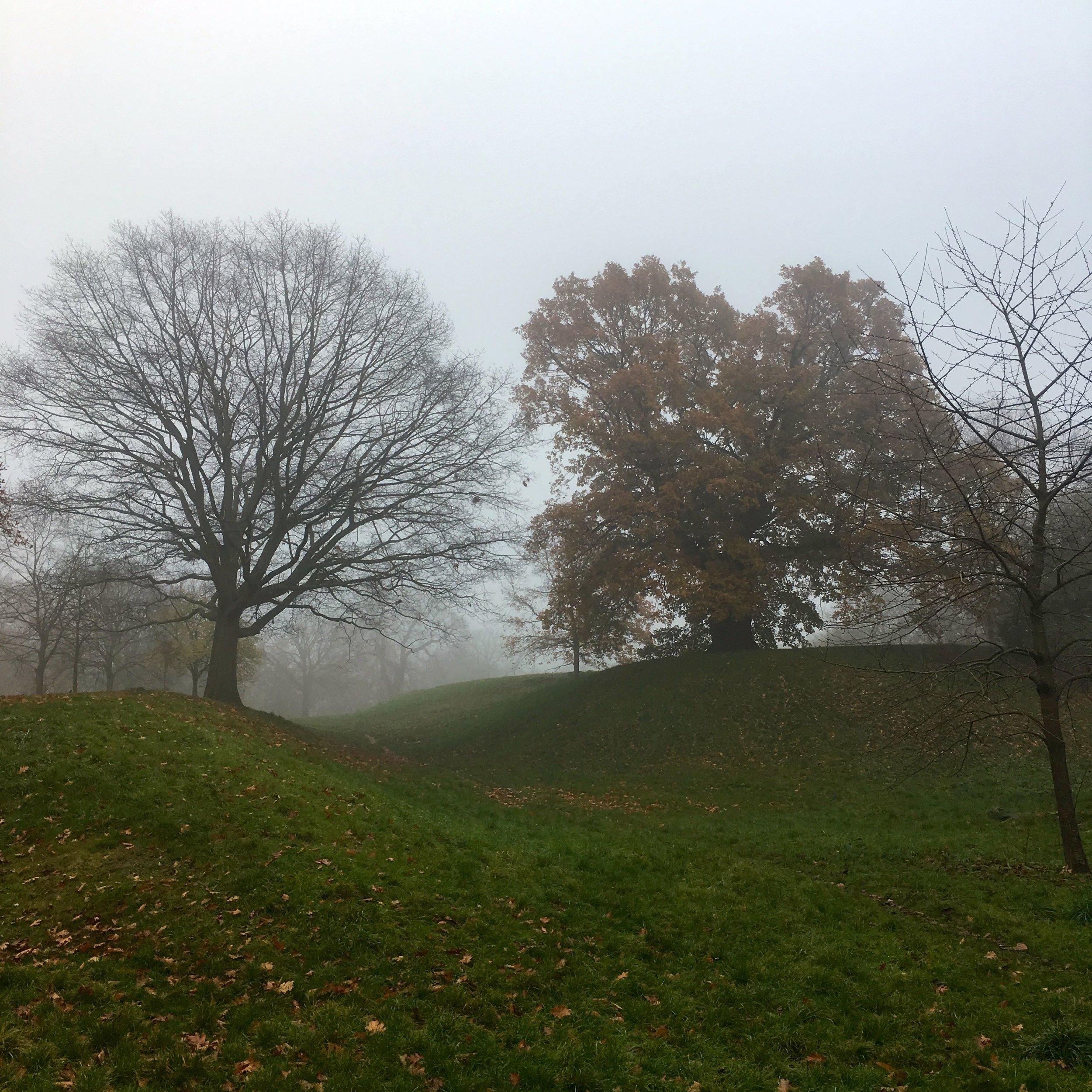 Fog in the dip in Greenwich Park