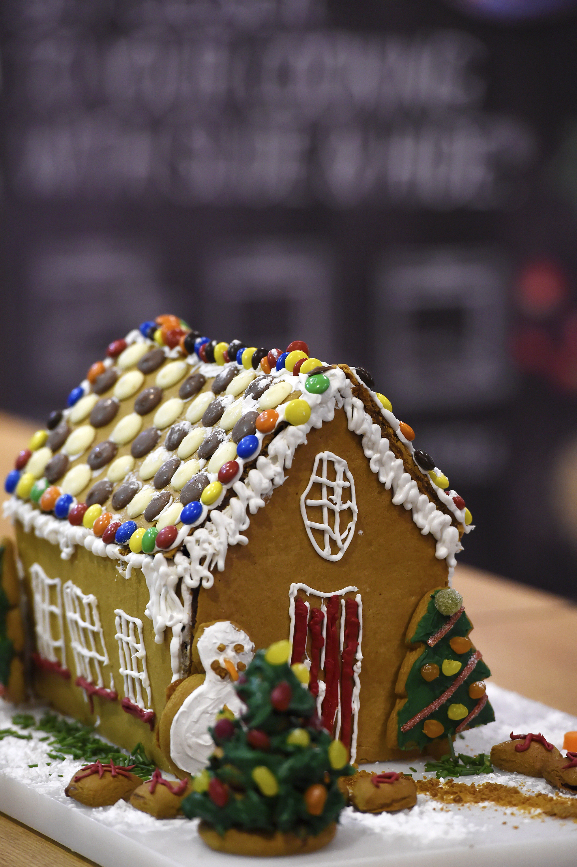 the final result - our neff gingerbread house