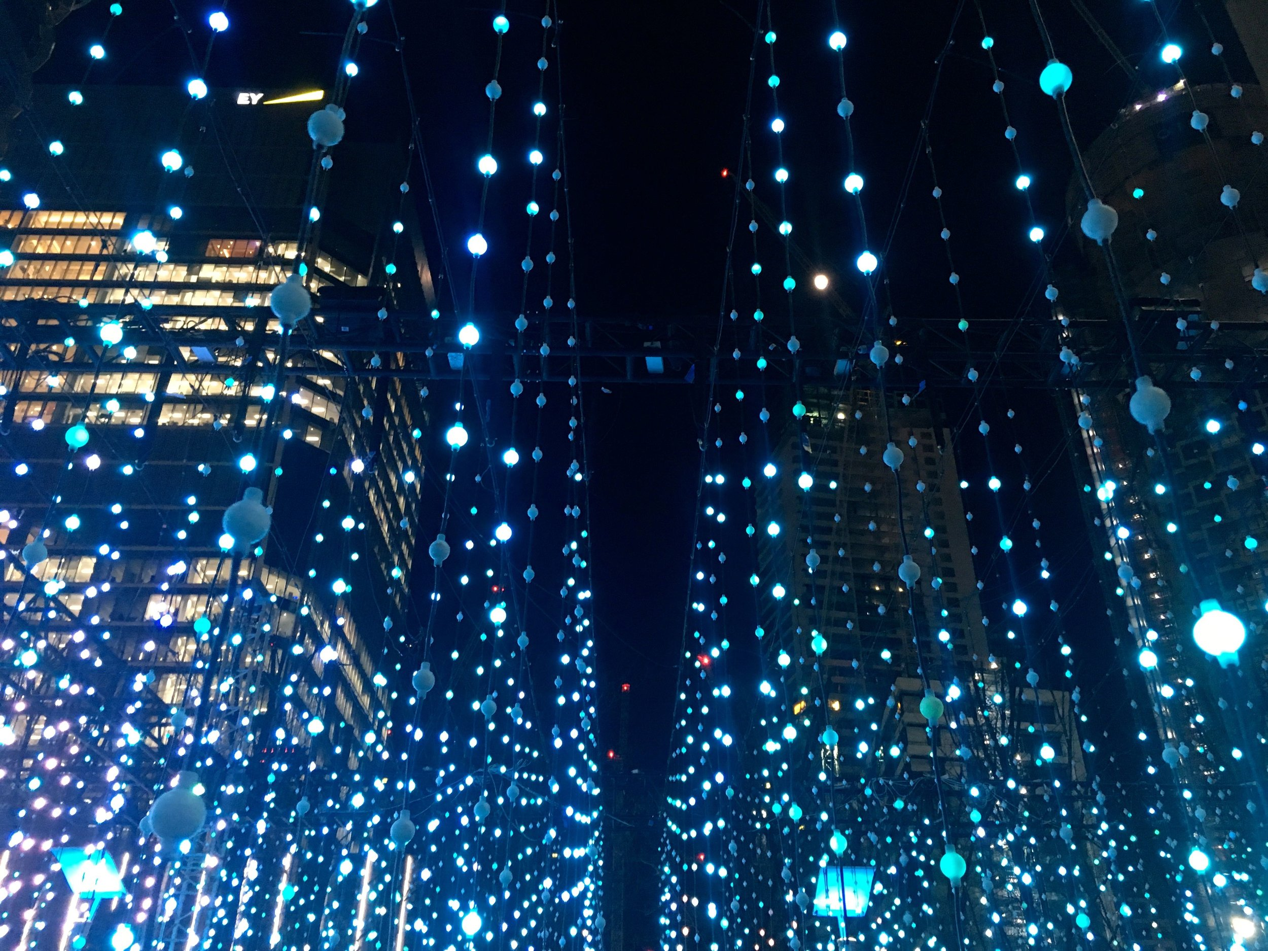an immersive experience at winter lights in canary wharf
