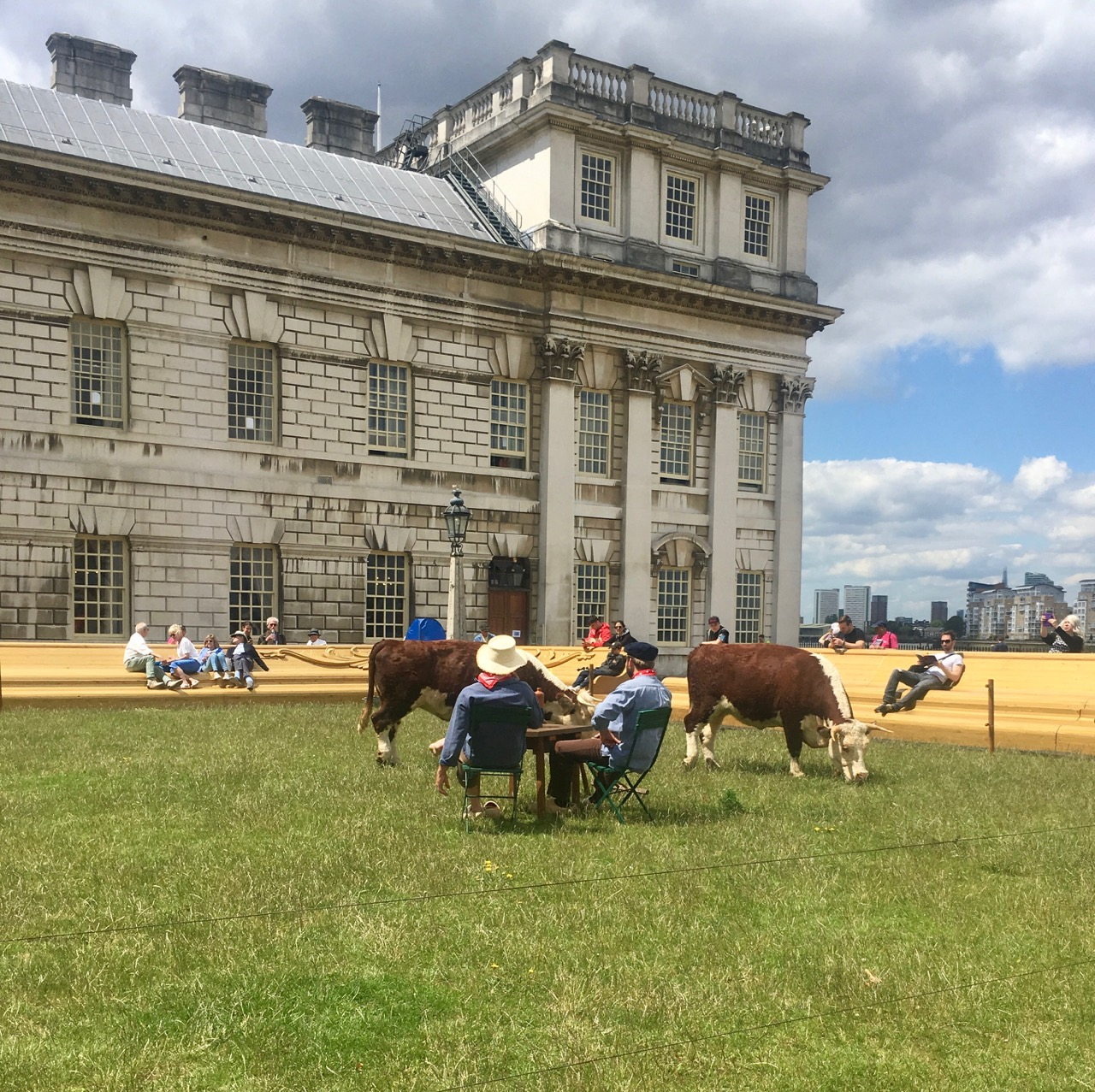 cows at the old royal naval college