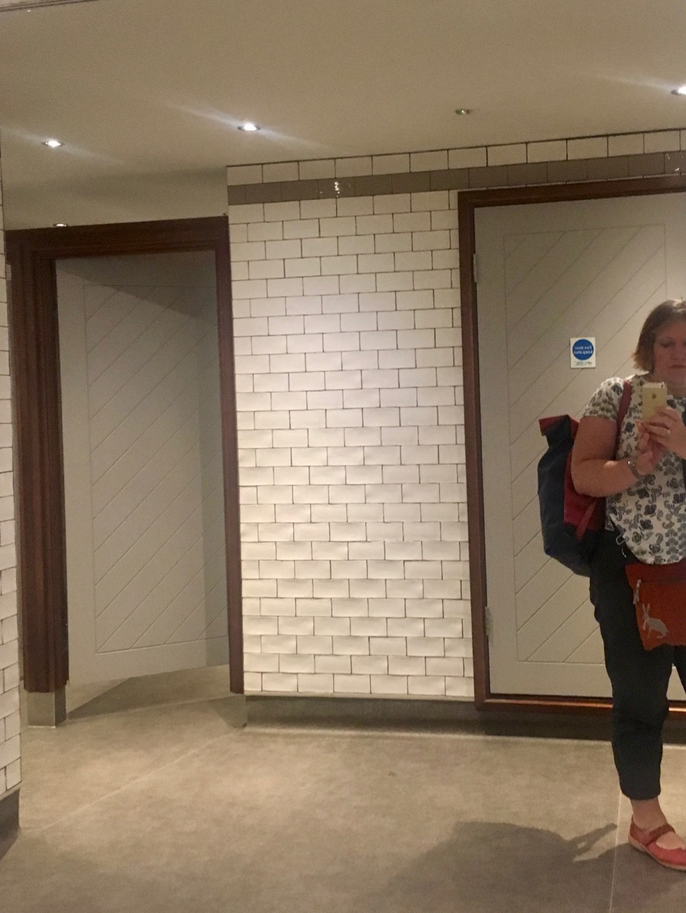 there were more loos and a giant mirror