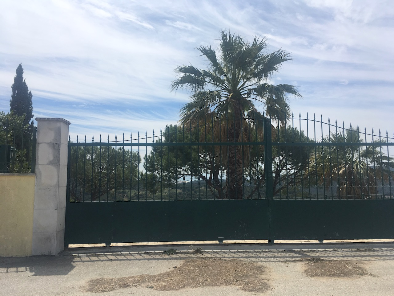 Functional gates despite their extra width and the palm tree