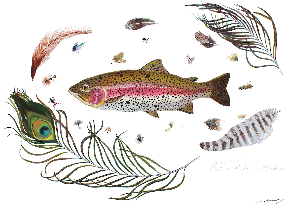 Rainbow Trout, Madison River, Montana  18x24 inches, acrylic ink on paper