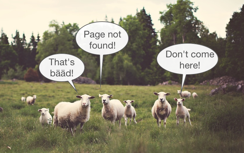 404_sheep_small