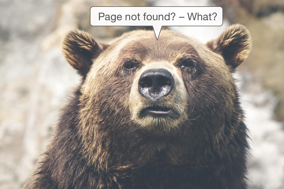 404_bear