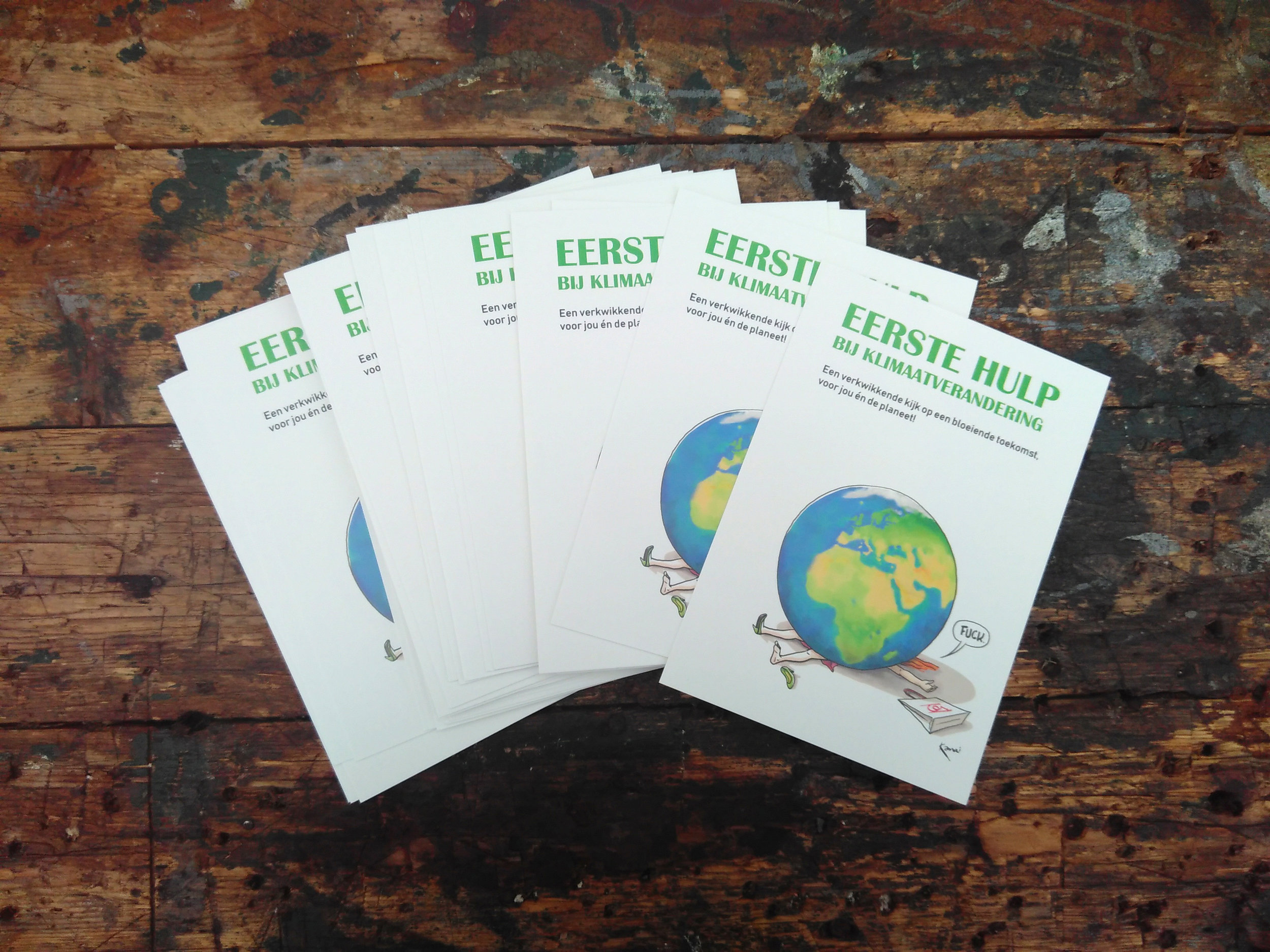 """First aid kit for climate change: a five step program towards a flourishing future, for you and the planet"""