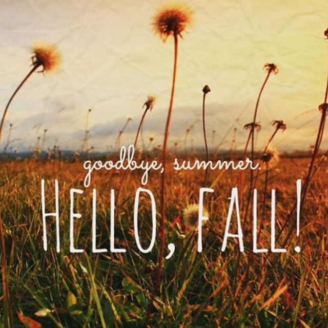 Happy Fall! 🍃🍁🍂