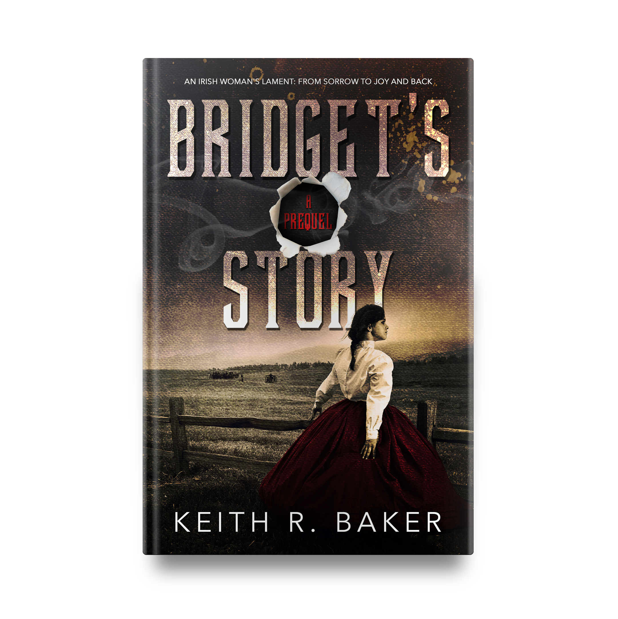Keith R. Baker's Bridget's Story || Designed by TheThatchery.com