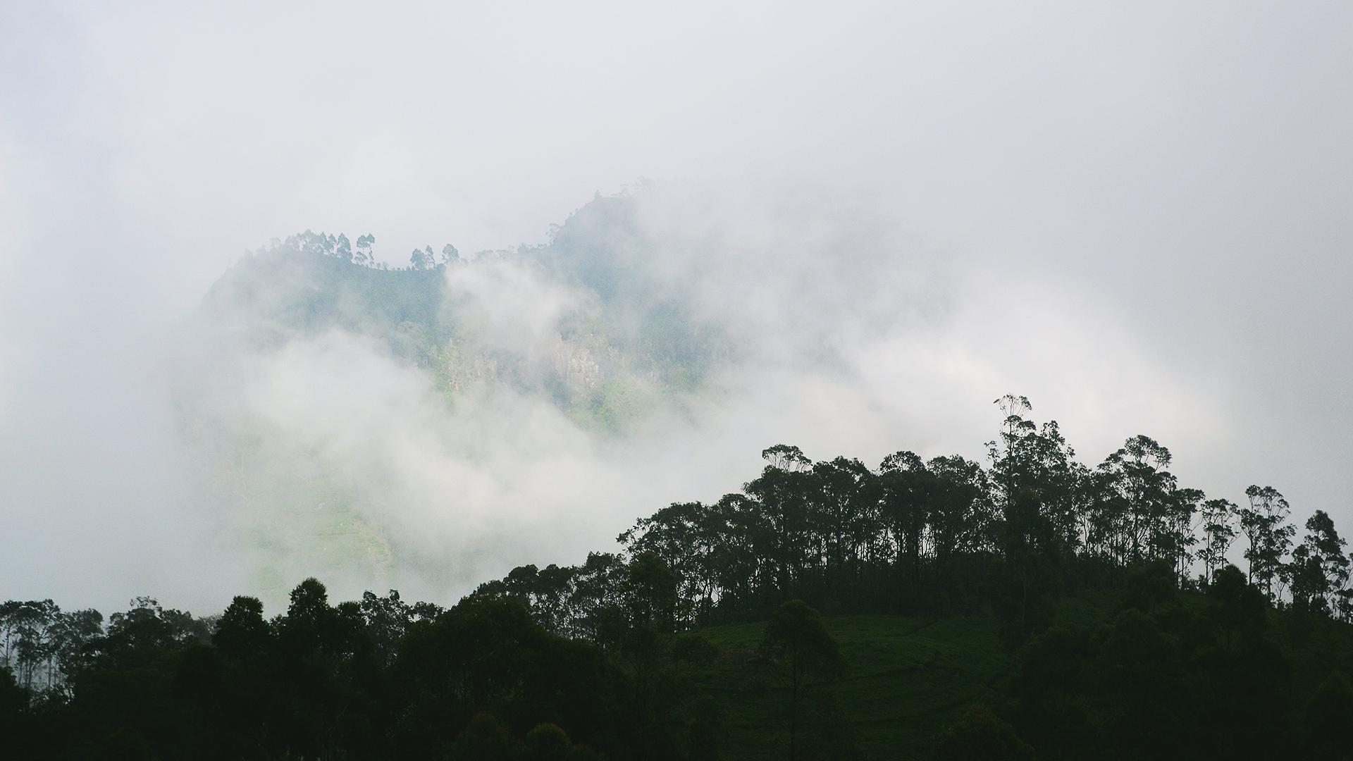 Y te esconden colinas como estas.