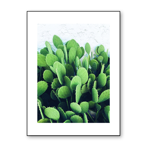Cactus Downloadable Print