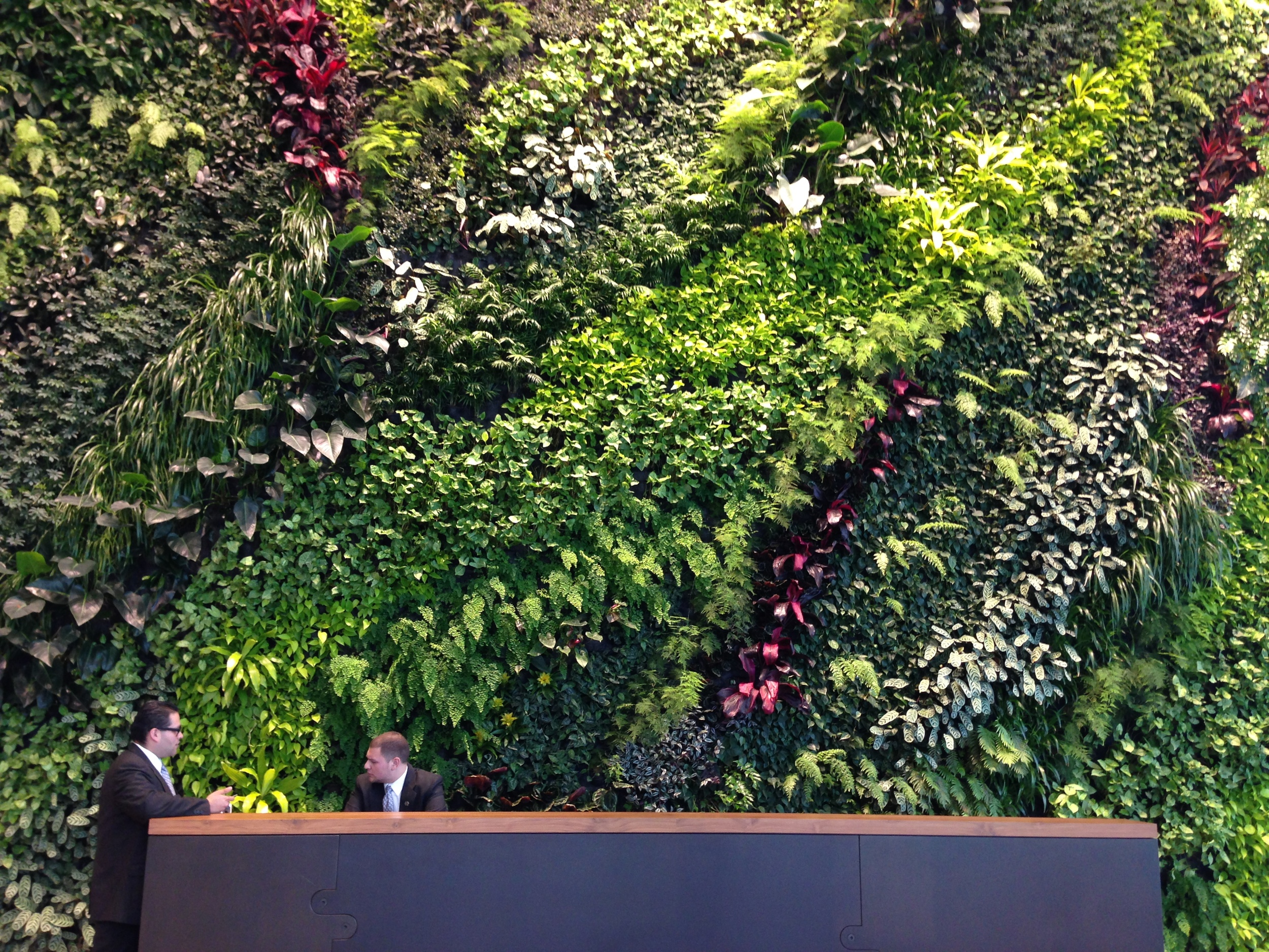 The lobby of one office building I visited had two solid walls of plants. I wonder if there's a startup that could make a product for that...