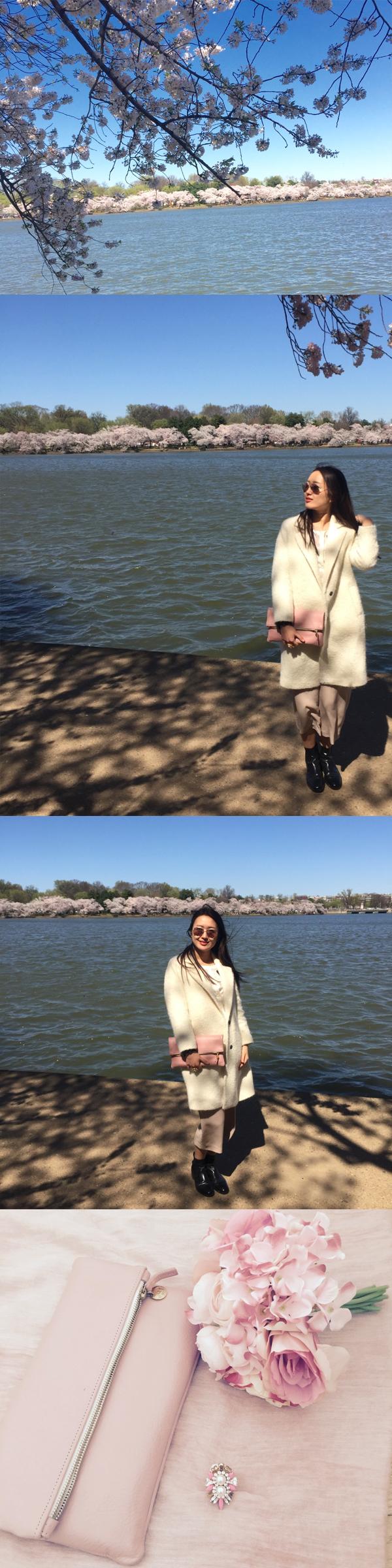 June Lemon Girl junelemongirl fashion blogger cherryblossom tidal basin cherry blossom 2016 washington dc