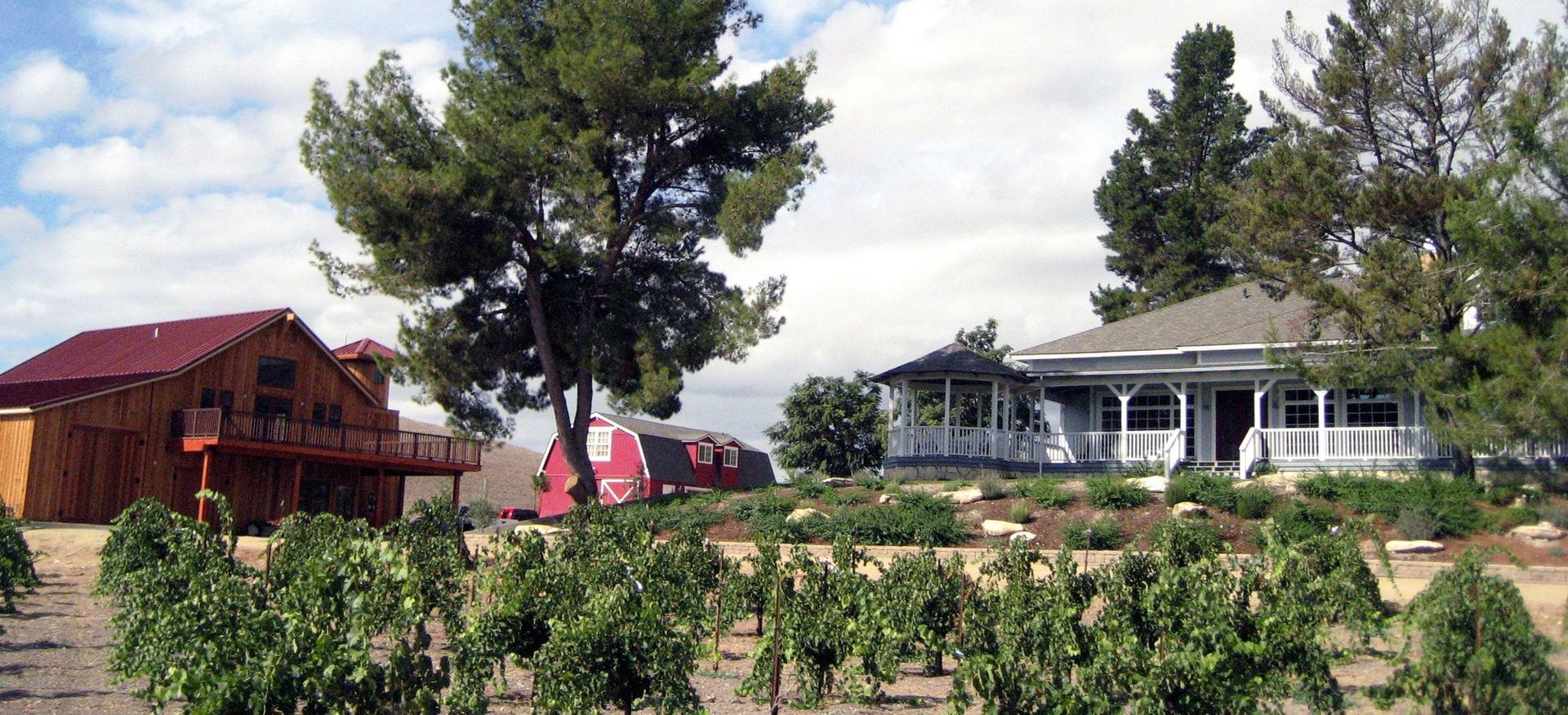 Photo courtesy of Ventaux Vineyards