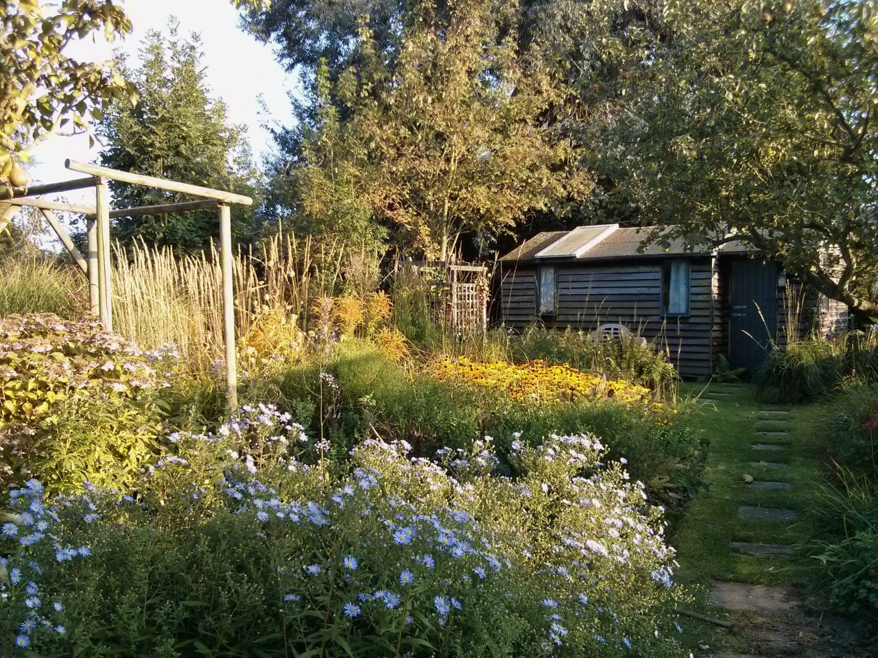It has been a rather hectic week so not much time to blog; but here is the garden with the trellis mostly removed.