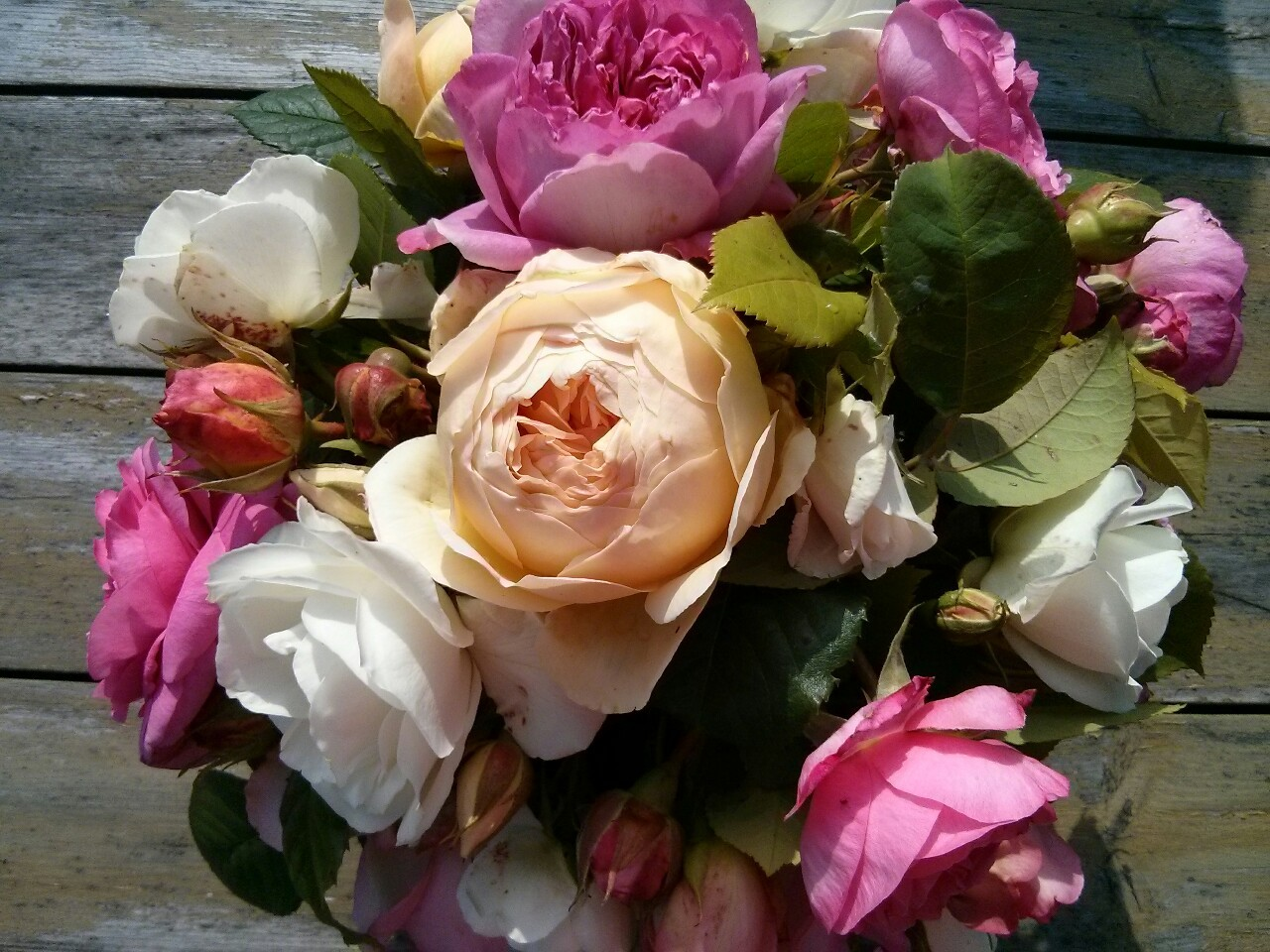 A vase of roses picked from the garden and the allotment; unfortunately I can't show you the fantastic scent.