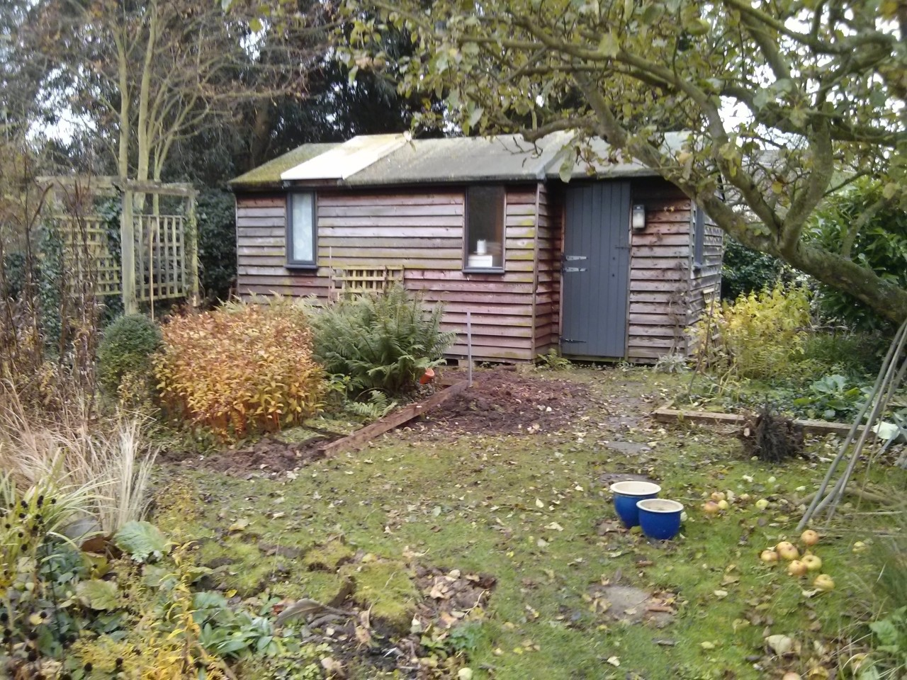 More work in the garden today, still clearing things. Beginning to realign the paths and beds and opening up space and light around the old studio.