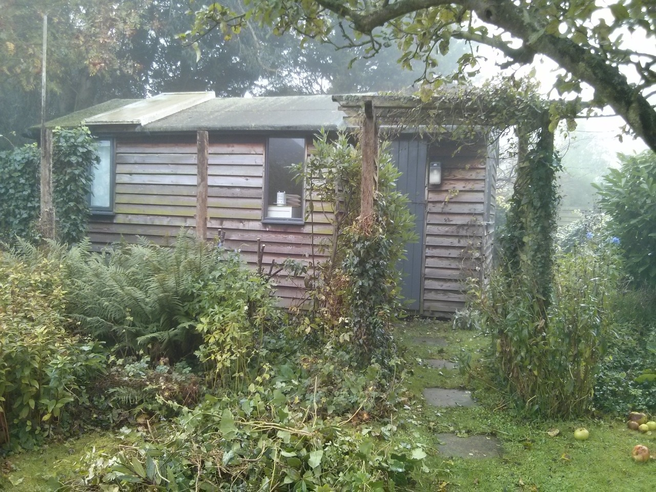 I've been taking down a trellis that has been up for about 20 years and hid my old studio from the rest of the garden. We are opening up the space and thinking how we can use the old studio… it needs a creosote!