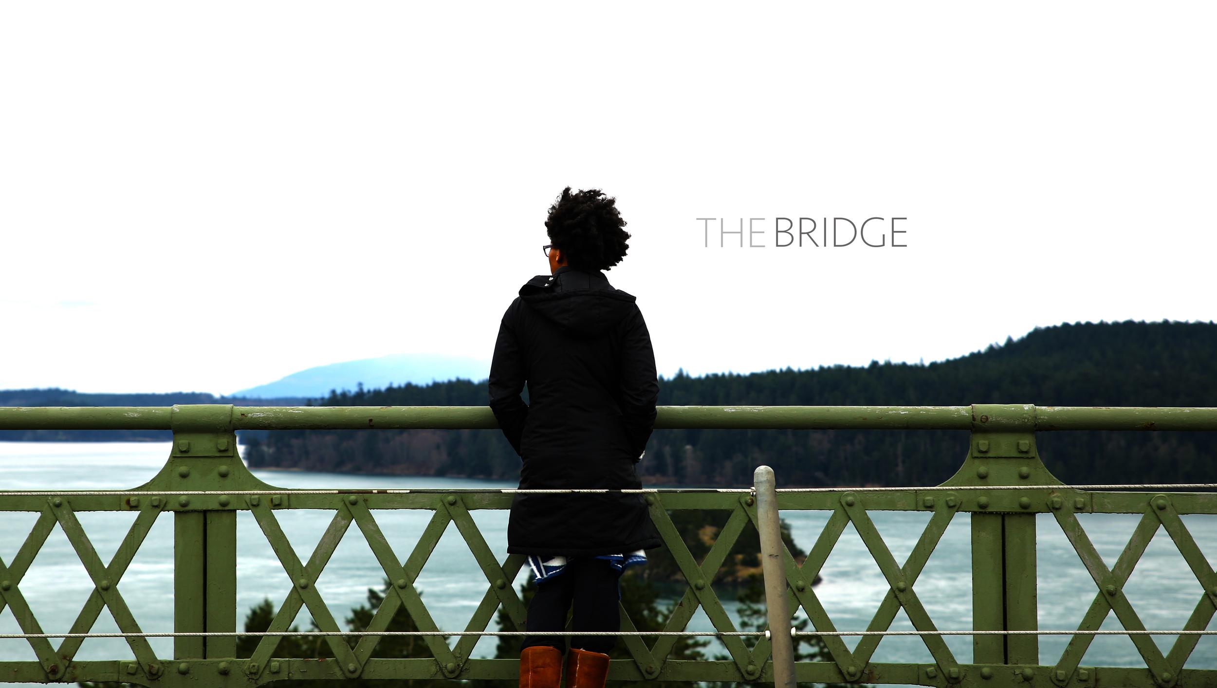thebridge-still-photo-2.jpg